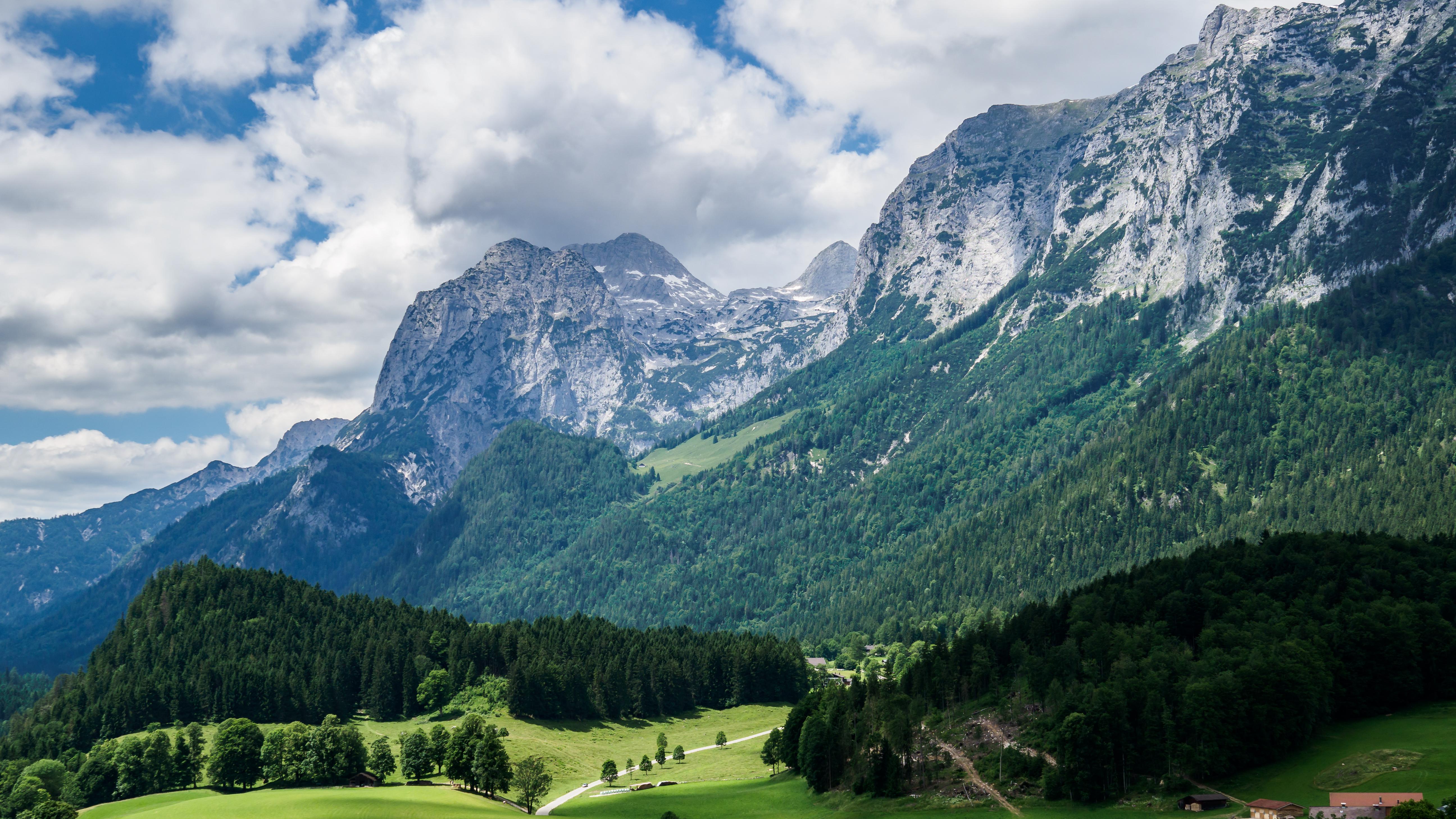 67069 обои 480x800 на телефон бесплатно, скачать картинки Пейзаж, Природа, Горы, Лес, Альпы, Склон 480x800 на мобильный