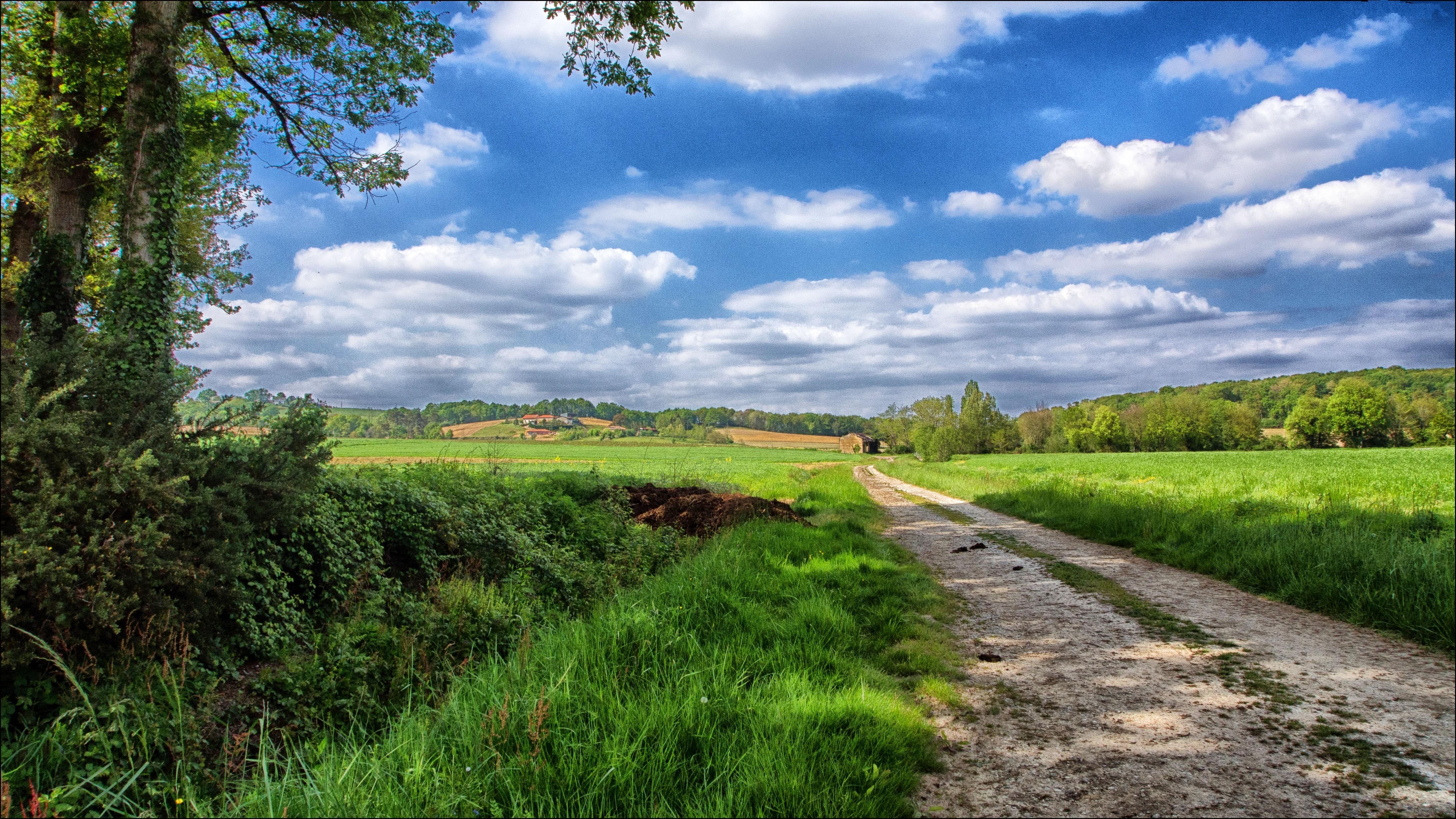 146194壁紙のダウンロード自然, 道路, 道, スカイ, フィールド, 畑, 風景-スクリーンセーバーと写真を無料で