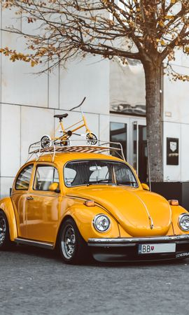 119702 Screensavers and Wallpapers Volkswagen for phone. Download Cars, Volkswagen Beetle, Volkswagen, Car, Retro pictures for free