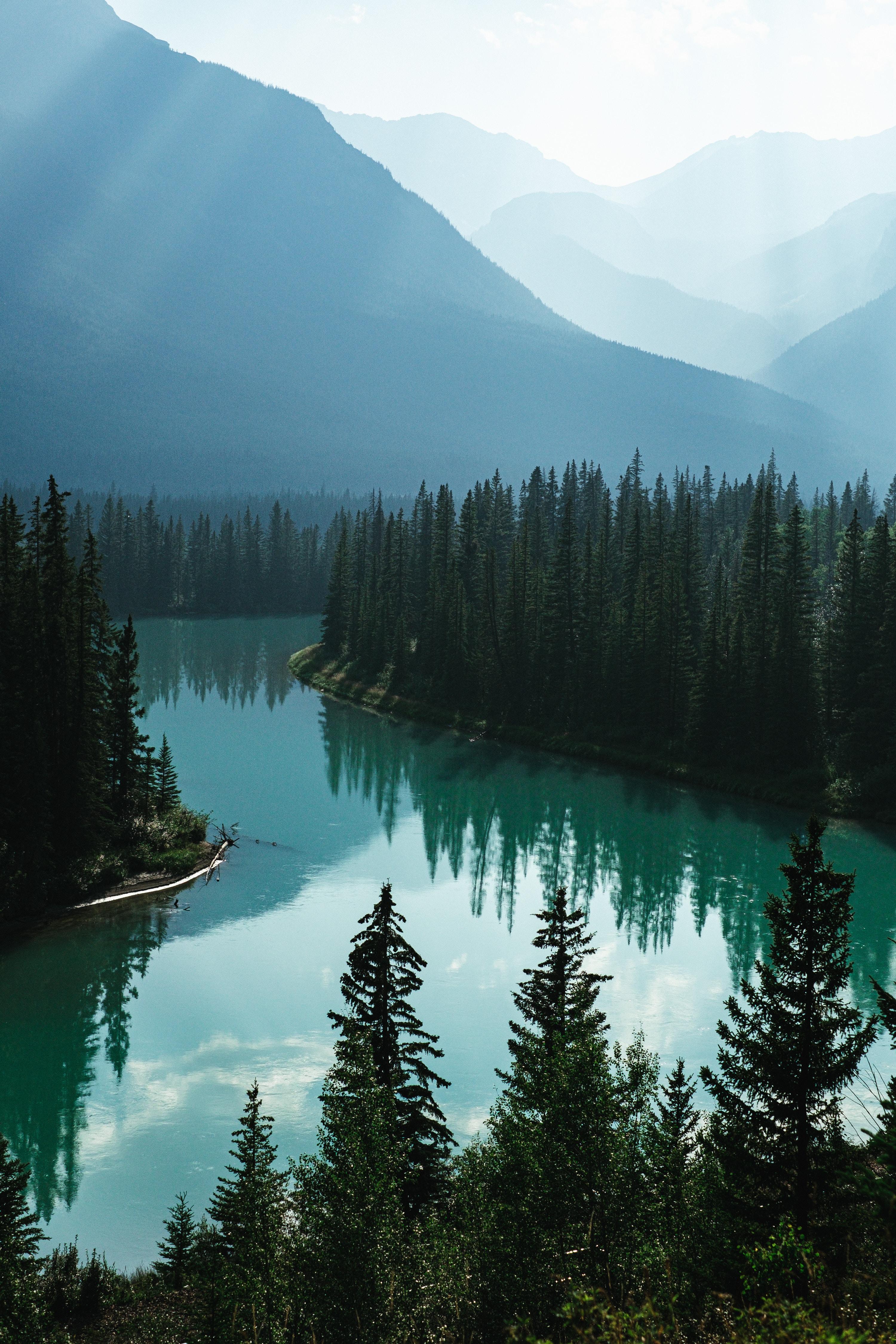 110219 скачать обои Природа, Река, Лес, Туман, Горы, Пейзаж - заставки и картинки бесплатно
