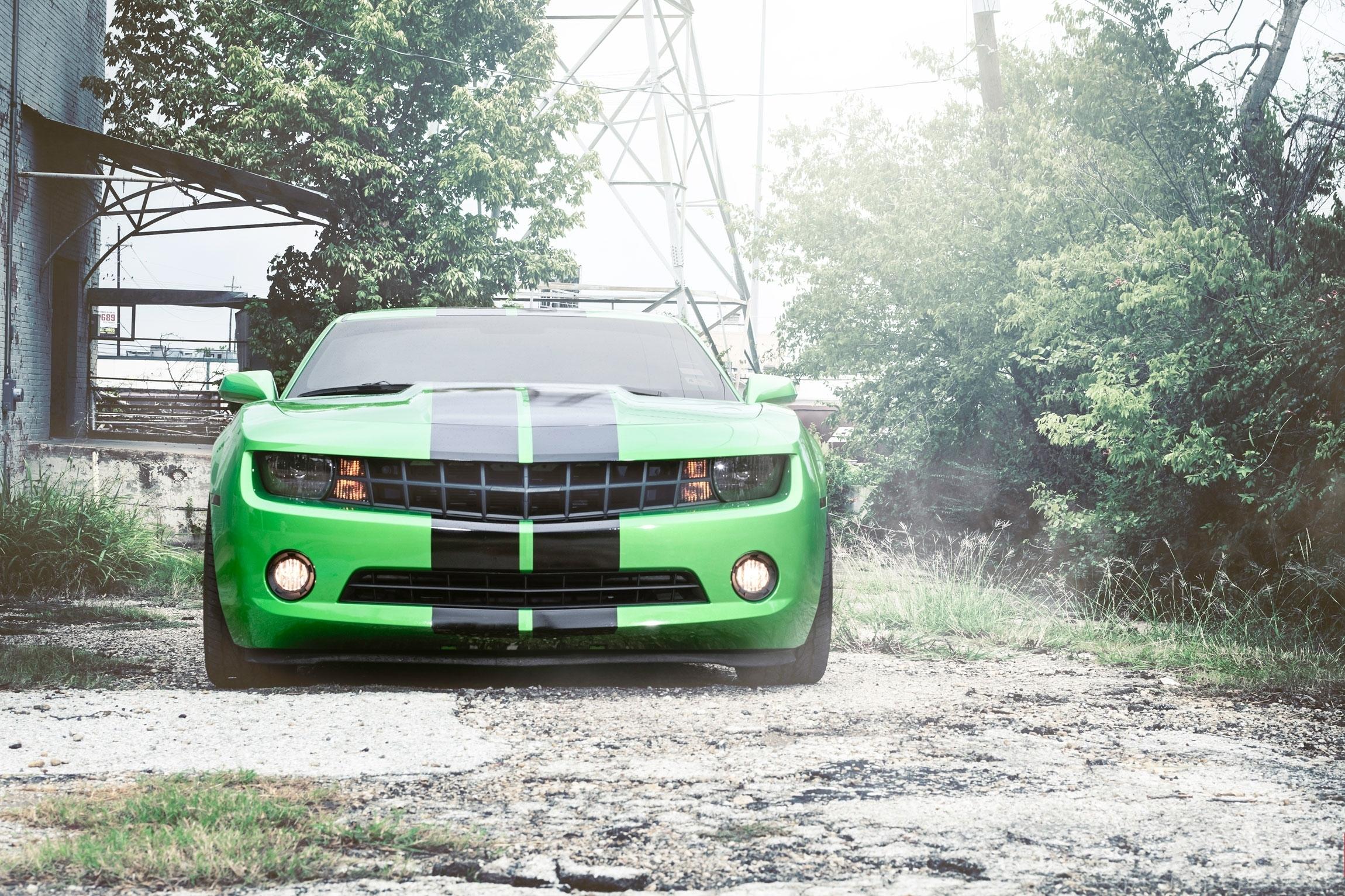 83642 скачать обои Тачки (Cars), Шевроле (Chevrolet), Camaro, Шевроле, Камаро, Передок, Зелёный, Чёрные, Полосы - заставки и картинки бесплатно