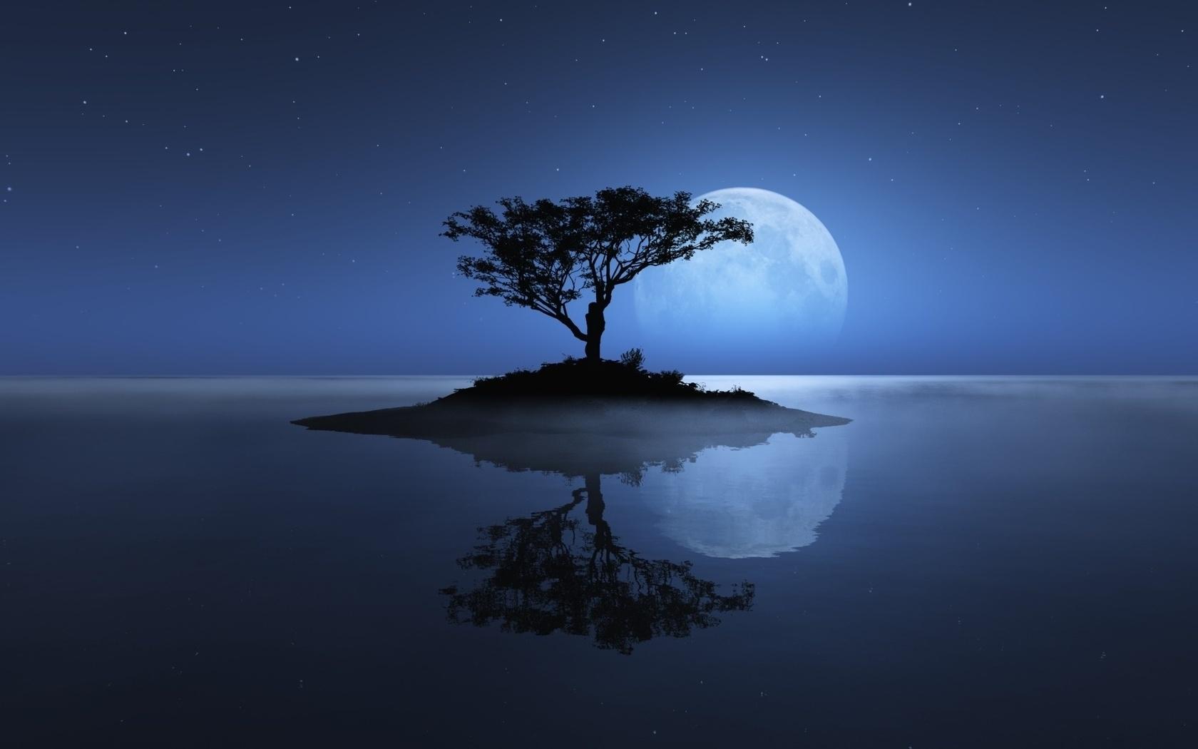 34216 скачать обои Пейзаж, Деревья, Луна - заставки и картинки бесплатно