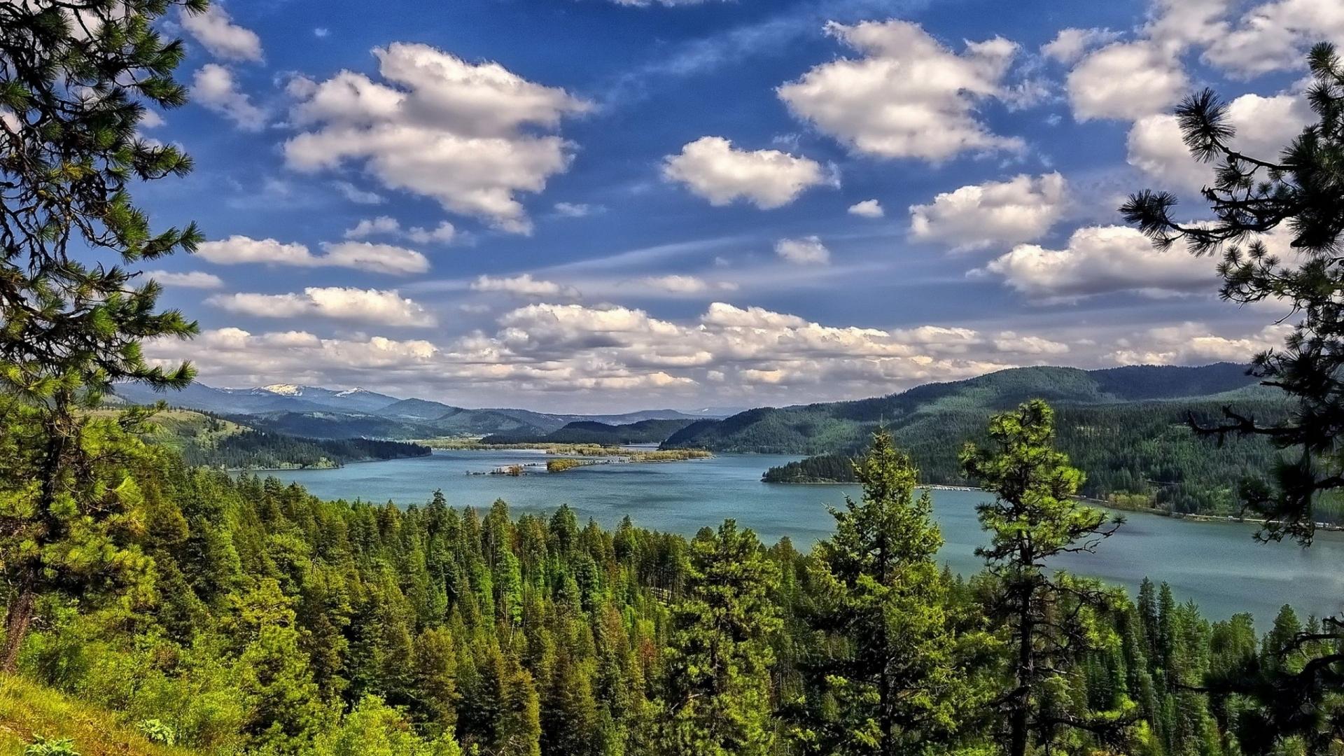 26147 скачать обои Пейзаж, Река, Деревья, Небо, Облака - заставки и картинки бесплатно