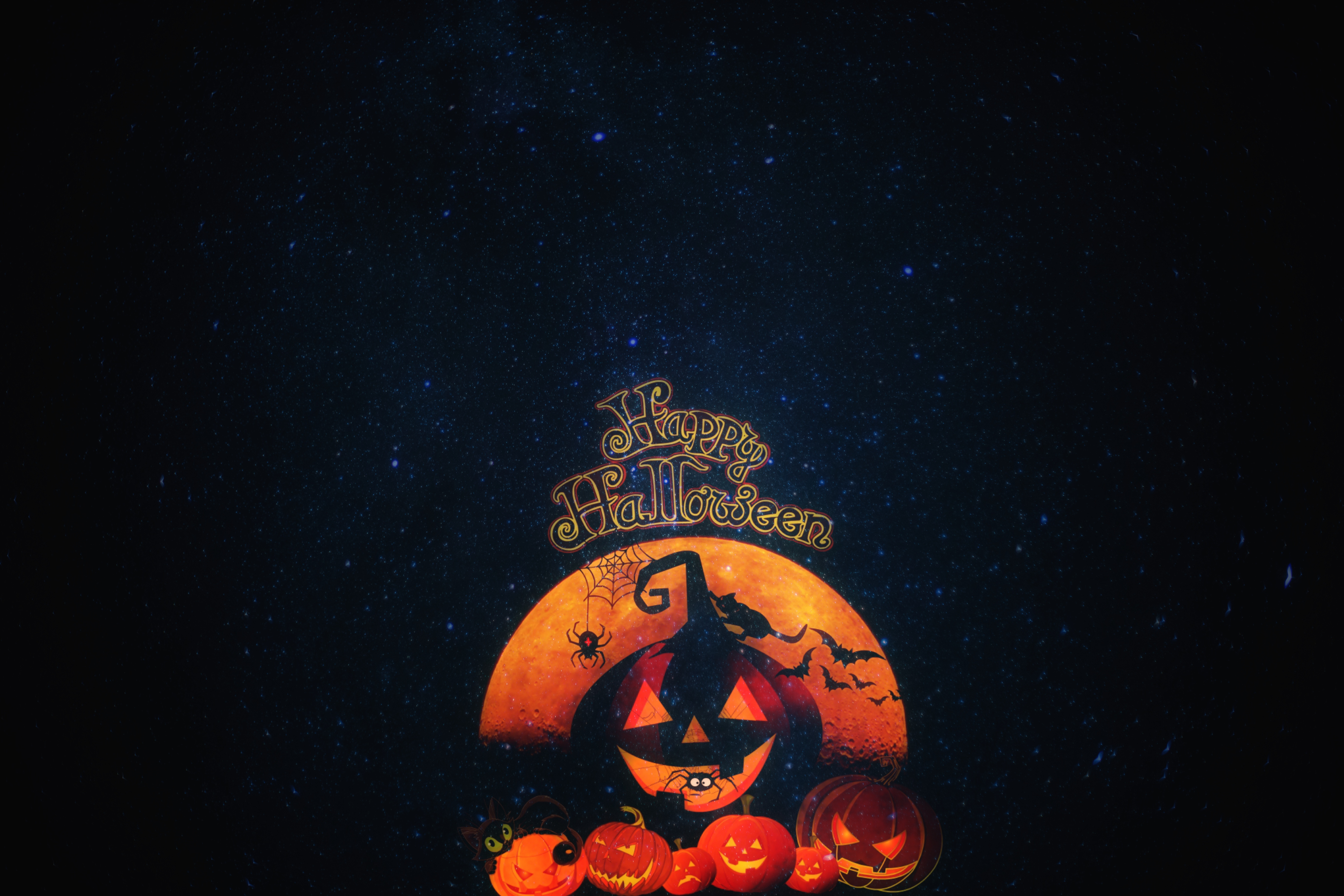 68429 download wallpaper Halloween, Holiday, Holidays, Autumn, Pumpkin, Cat screensavers and pictures for free