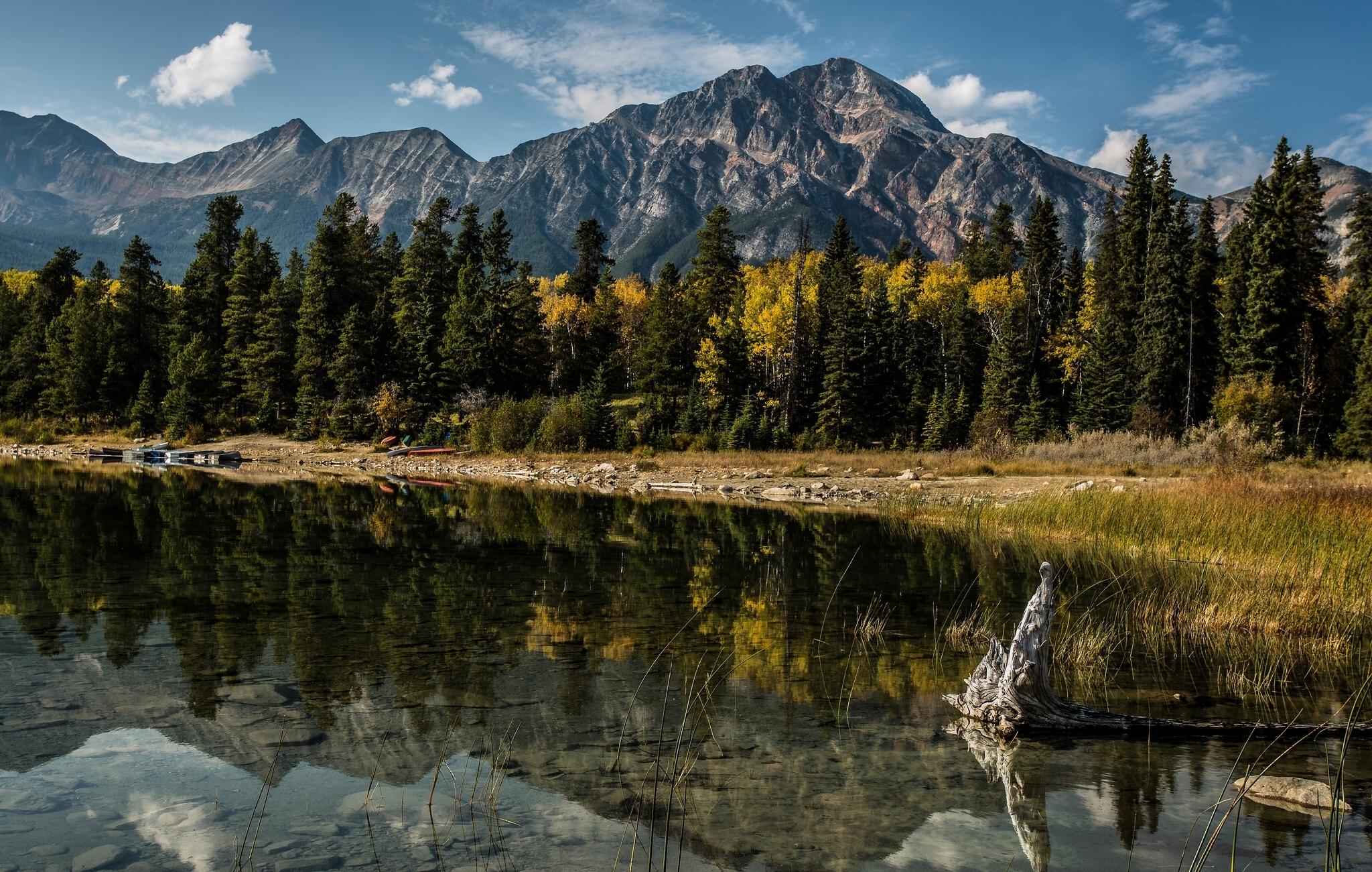 62610 Hintergrundbild 1024x768 kostenlos auf deinem Handy, lade Bilder Natur, Bäume, Mountains, See, Reflexion, Kanada, Albert, Alberta 1024x768 auf dein Handy herunter