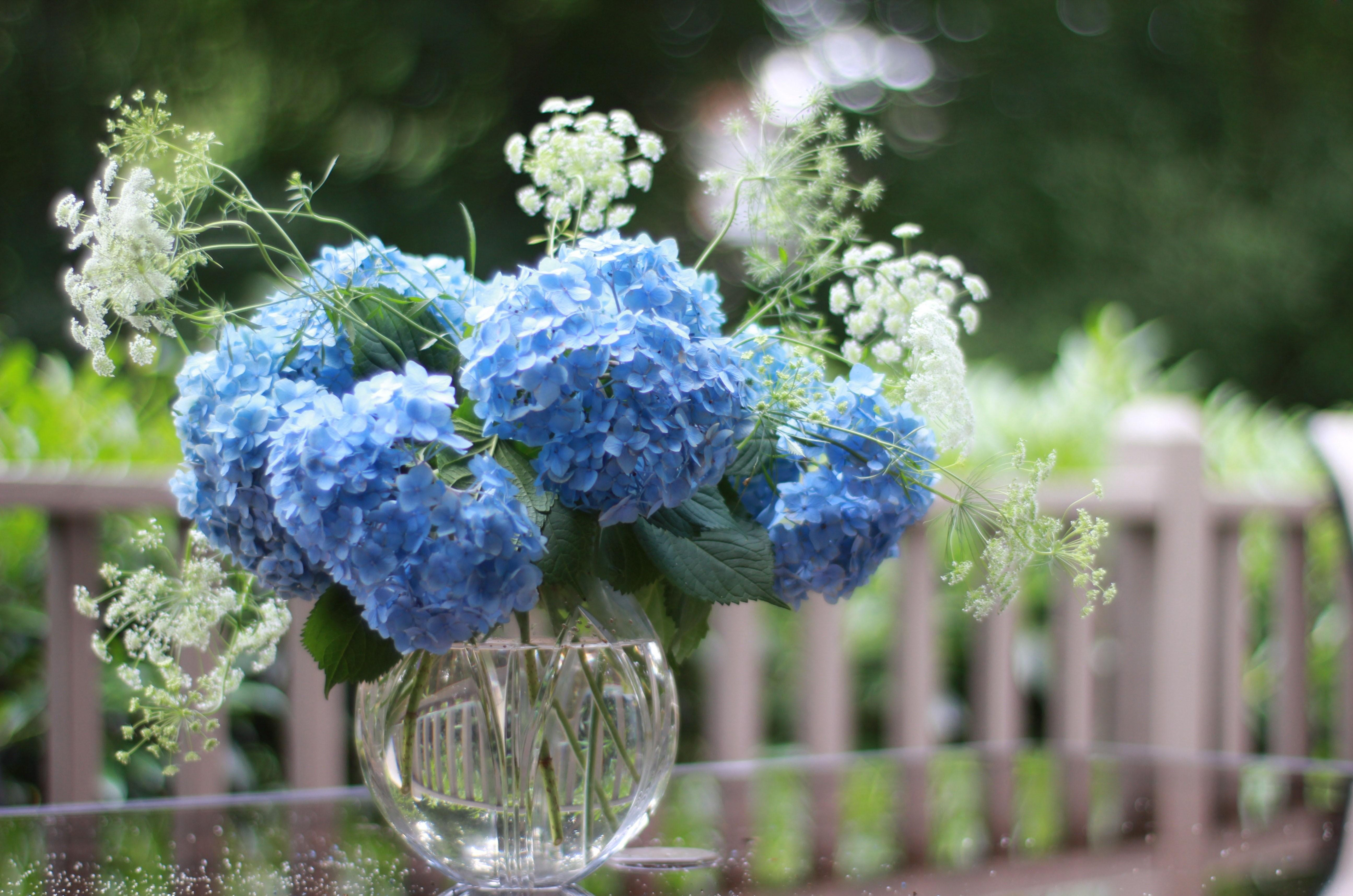 115711 download wallpaper Flowers, Bouquet, Vase, Hydrangea, Sharpness screensavers and pictures for free