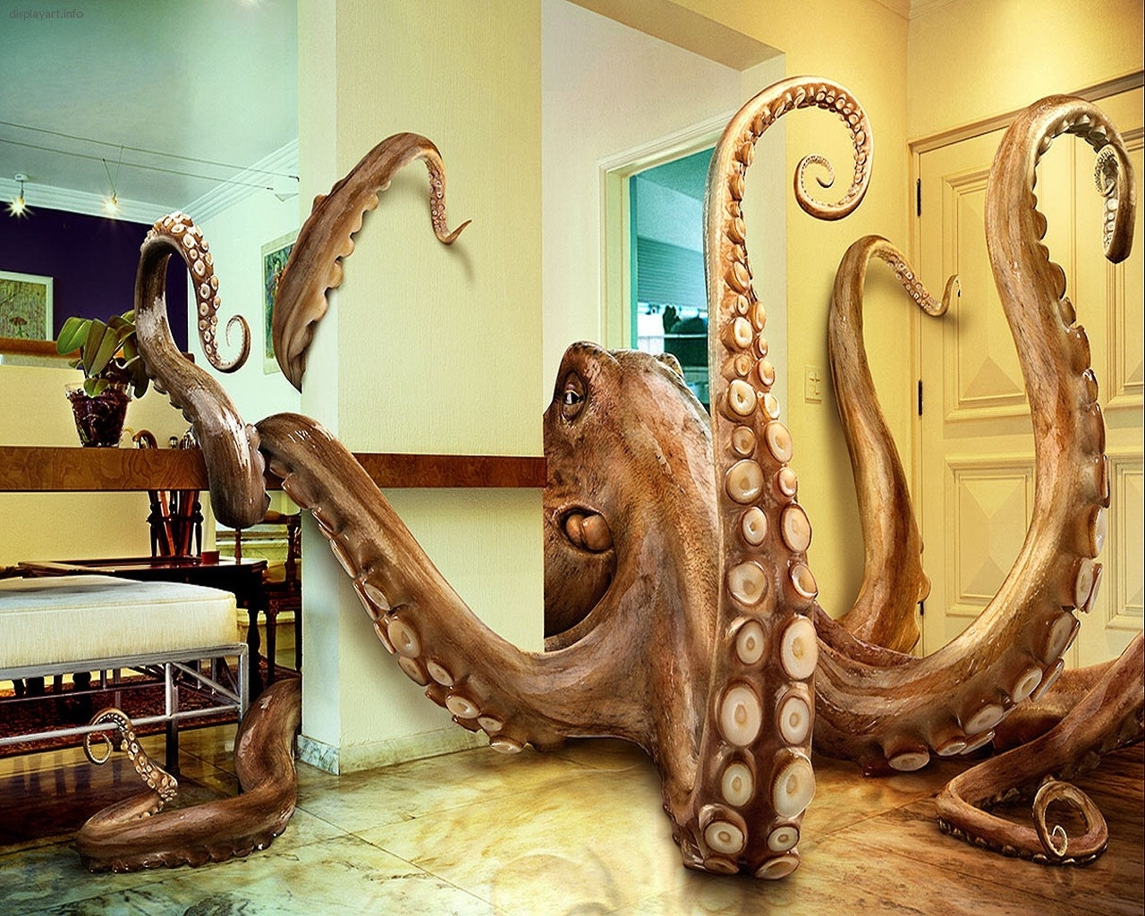 3398 download wallpaper Funny, Abstract, Octopus screensavers and pictures for free