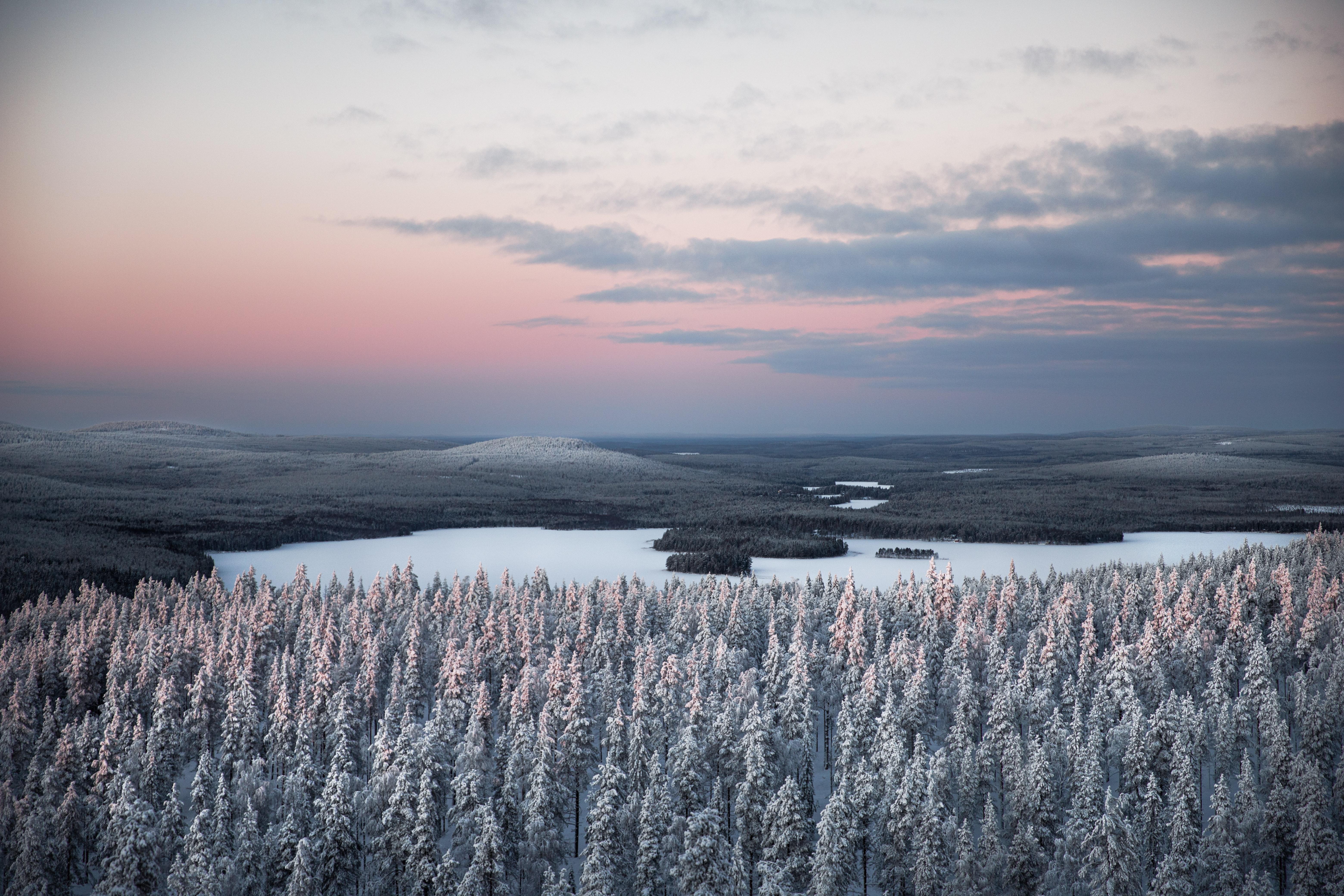 54520 免費下載壁紙 性质, 森林, 河, 雪, 从上面看, 顶视图, 冬天, 景观 屏保和圖片