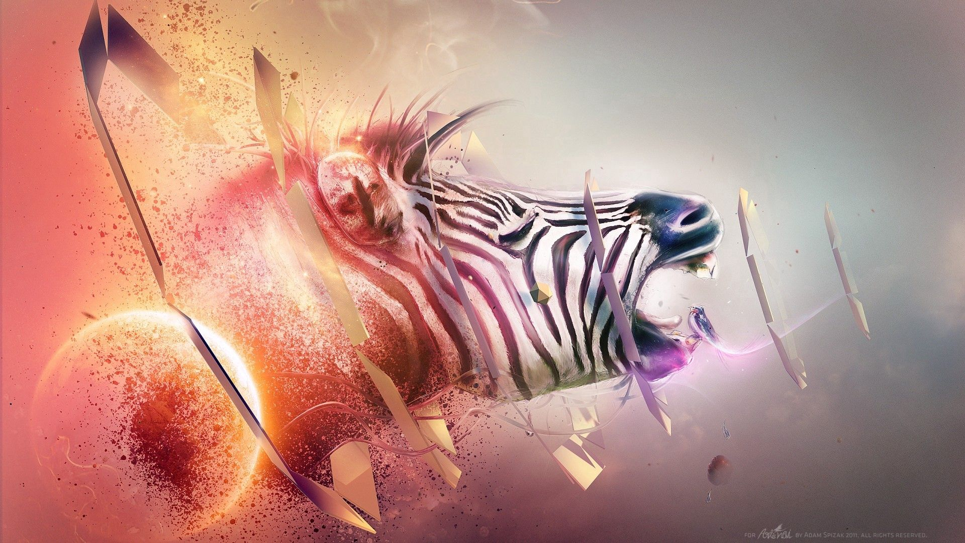 151294 download wallpaper Abstract, Zebra, Head, Stripes, Streaks, Explosion, Fantasy screensavers and pictures for free