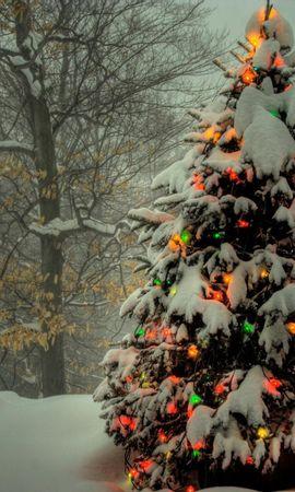 149927 télécharger le fond d'écran Fêtes, Sapin De Noël, Arbre De Noël, Guirlandes, Guirlande, Nouvel An, Noël, Arbres, Neige, Hiver, Vacances - économiseurs d'écran et images gratuitement