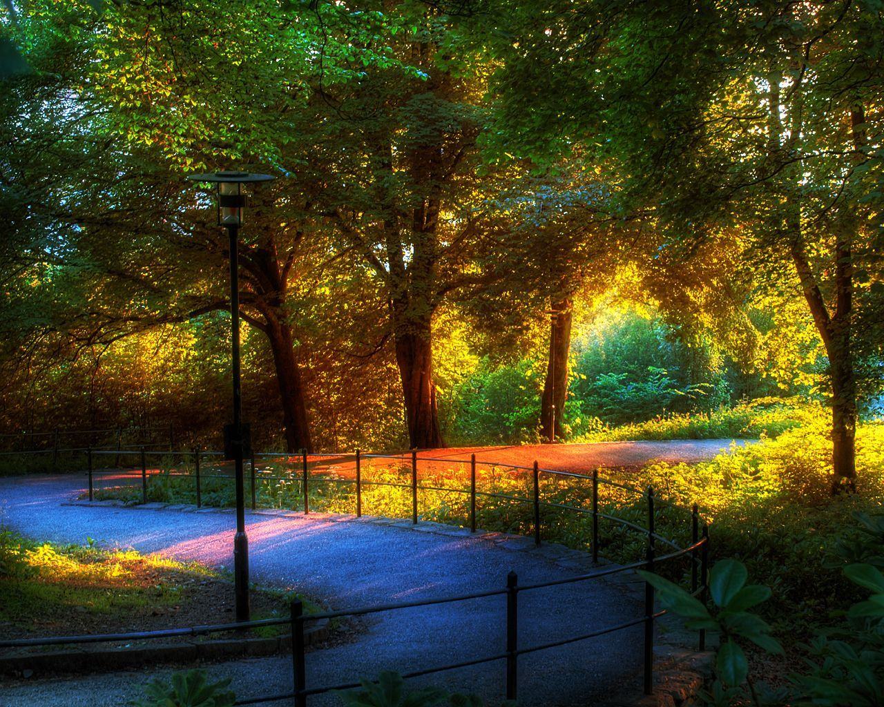 16314 download wallpaper Landscape, Trees, Art Photo screensavers and pictures for free