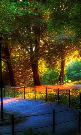 16314 скачать обои Пейзаж, Деревья, Артфото - заставки и картинки бесплатно