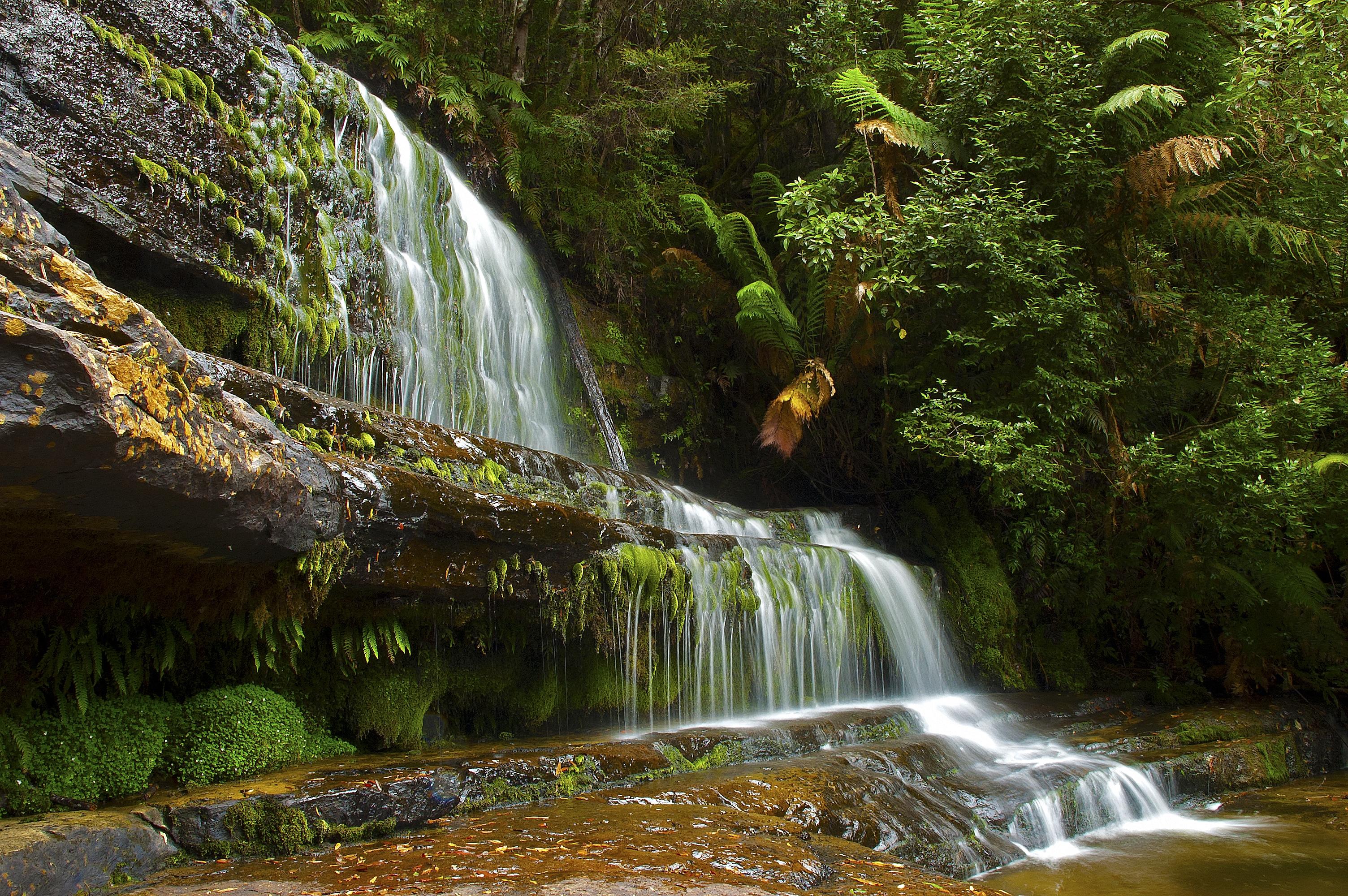 104043 descargar fondo de pantalla Naturaleza, Árboles, Cascada, Las Rocas, Rocas, Paisaje: protectores de pantalla e imágenes gratis