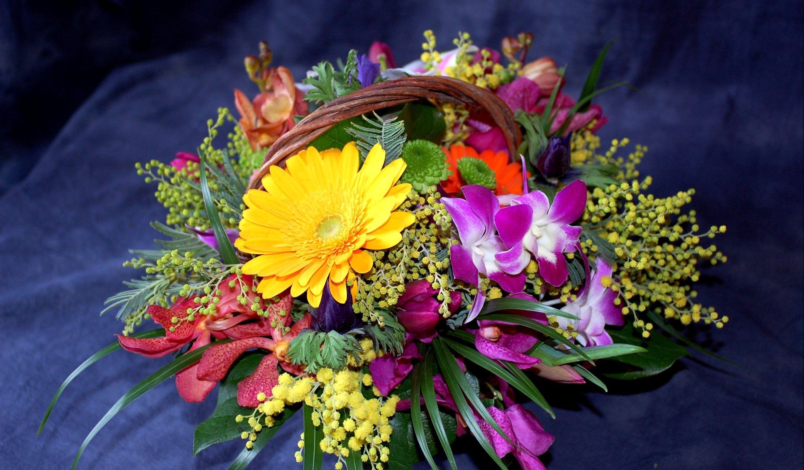 102930 скачать обои Цветы, Мимоза, Корзина, Композиция, Оформление, Хризантемы, Герберы - заставки и картинки бесплатно