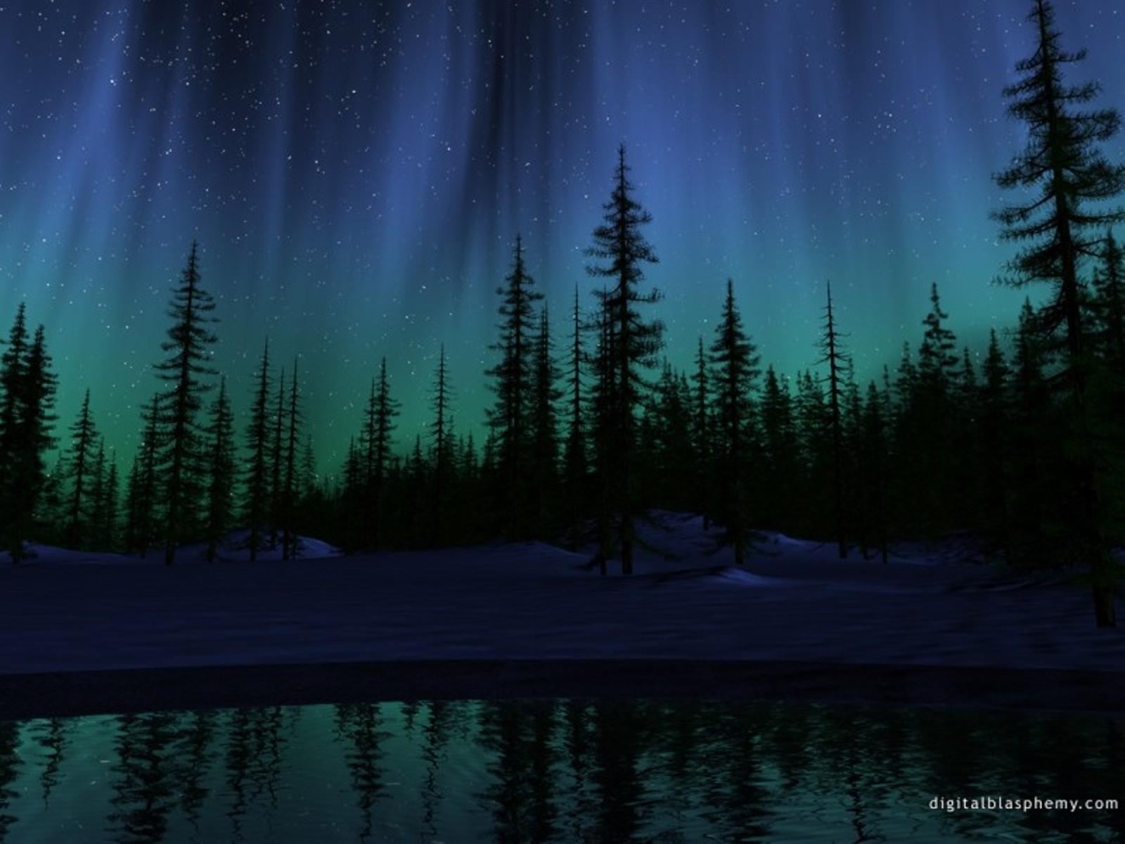 5138 скачать обои Пейзаж, Деревья, Небо, Ночь - заставки и картинки бесплатно