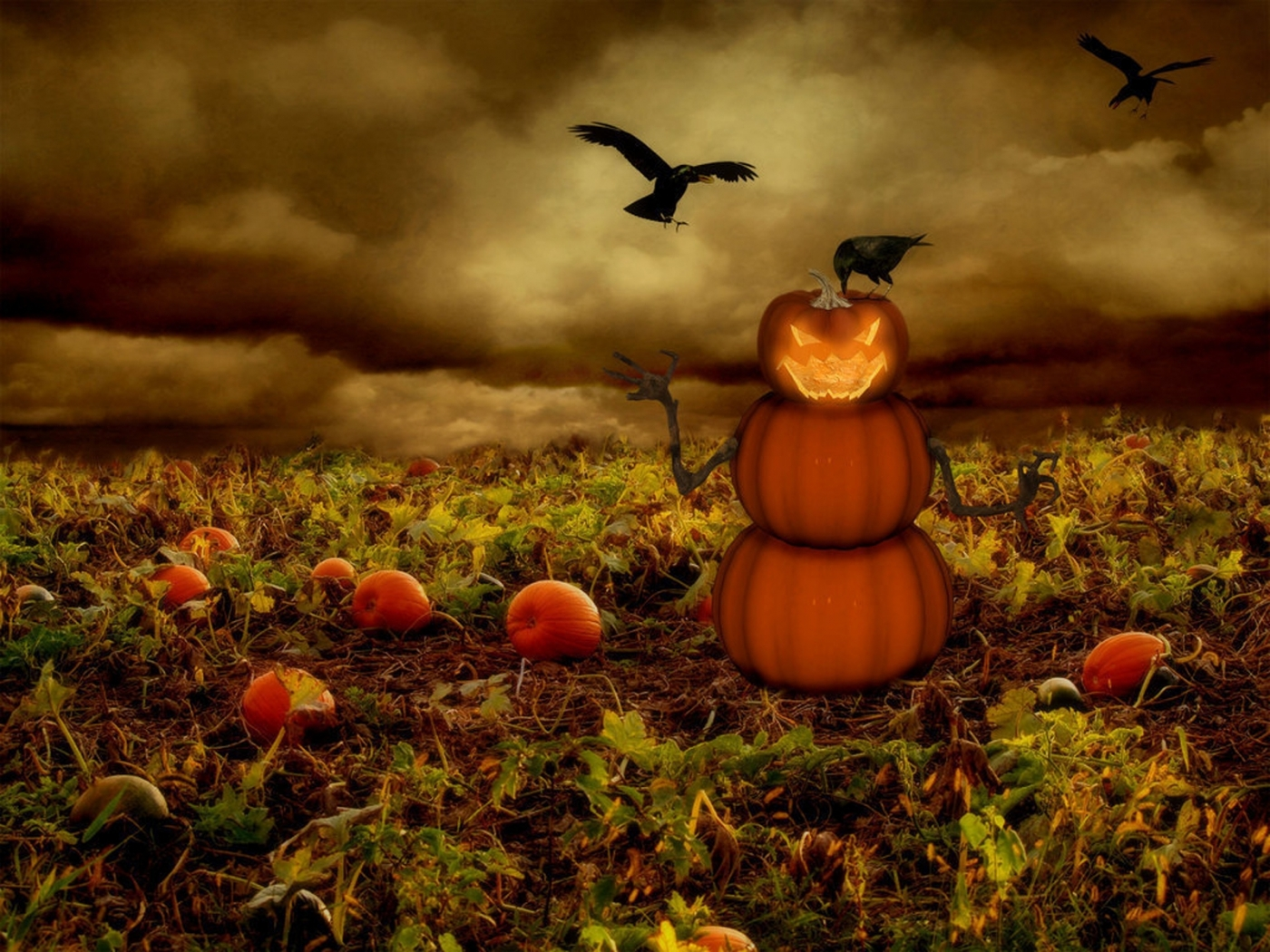 35774 download wallpaper Holidays, Background, Halloween screensavers and pictures for free