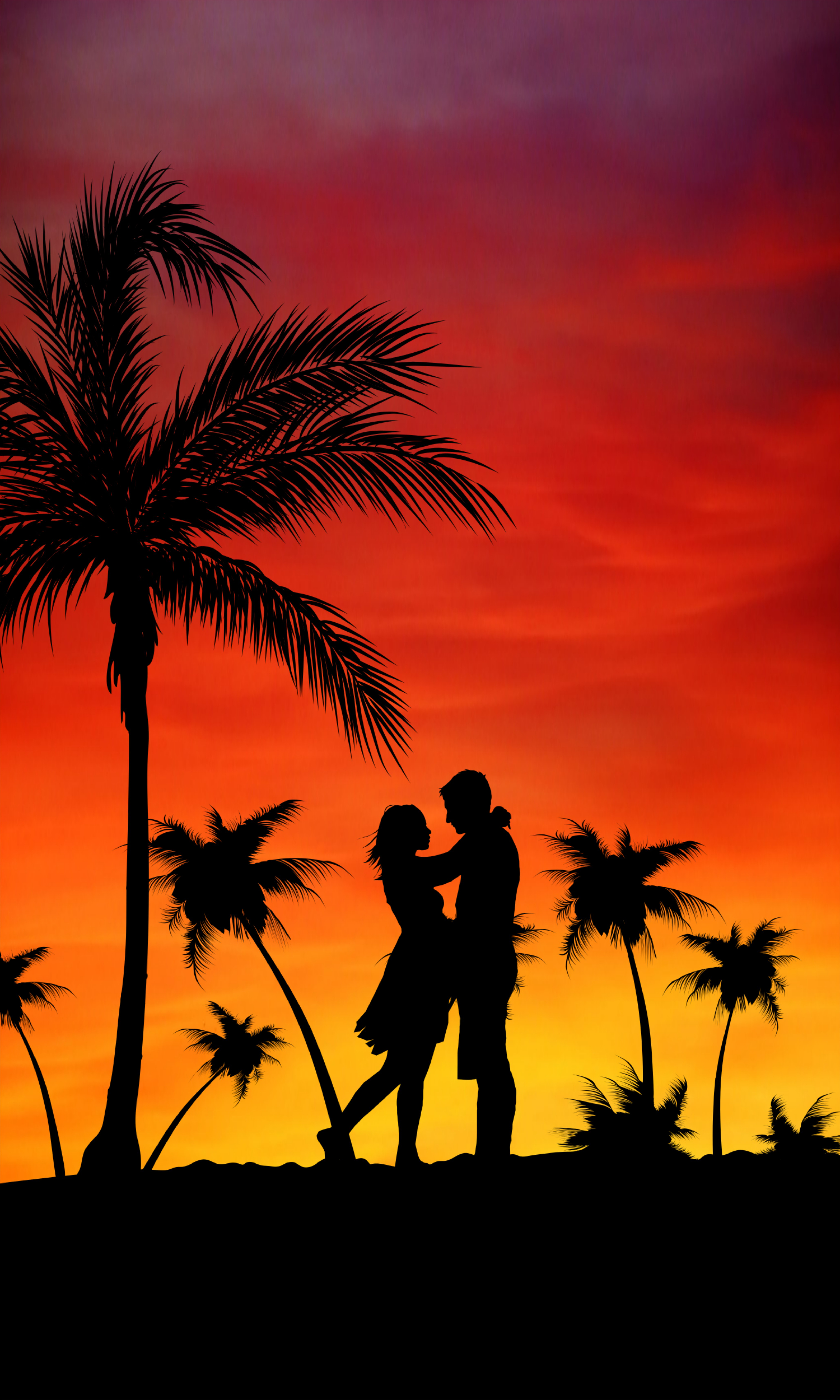 132257 download wallpaper Love, Sunset, Palms, Couple, Pair screensavers and pictures for free