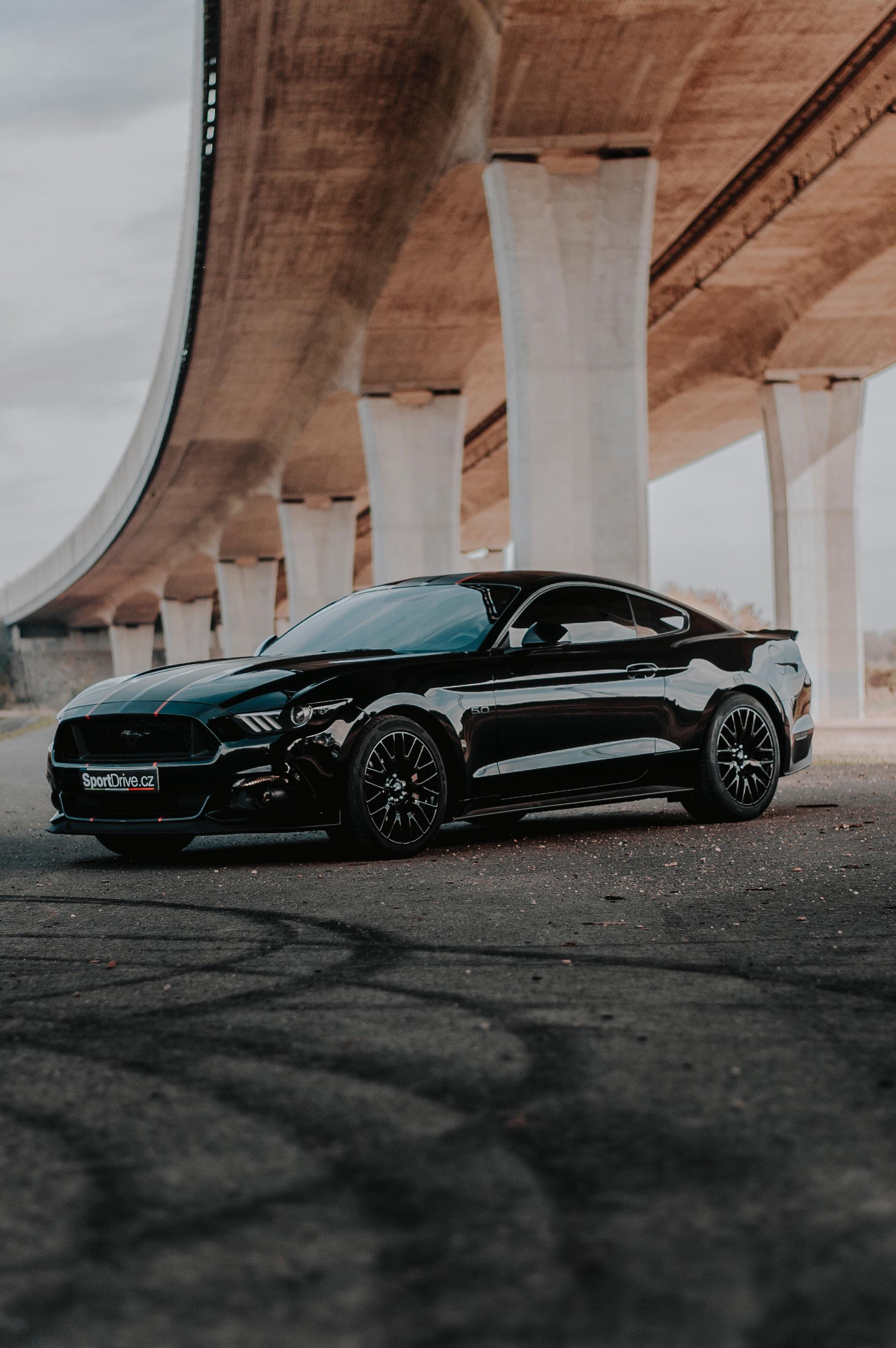 61553 скачать обои Форд (Ford), Автомобиль, Ford Mustang, Тачки (Cars), Черный, Вид Сбоку, Ford Mustang Gt - заставки и картинки бесплатно
