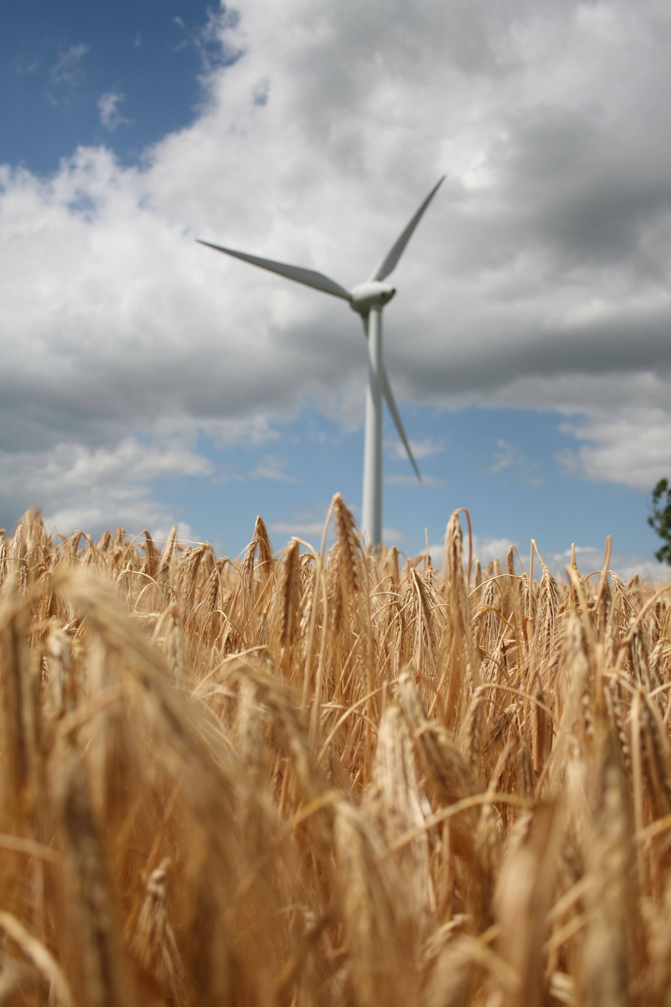 79500 скачать обои Природа, Ветровая Электростанция, Турбина, Поле, Колоски, Пшеница - заставки и картинки бесплатно