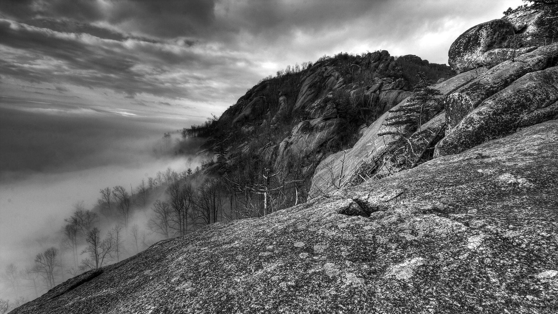 107011 baixar papel de parede Natureza, As Rochas, Rochas, Árvores, Névoa, Nevoeiro, Preto E Branco, Montanhas - protetores de tela e imagens gratuitamente