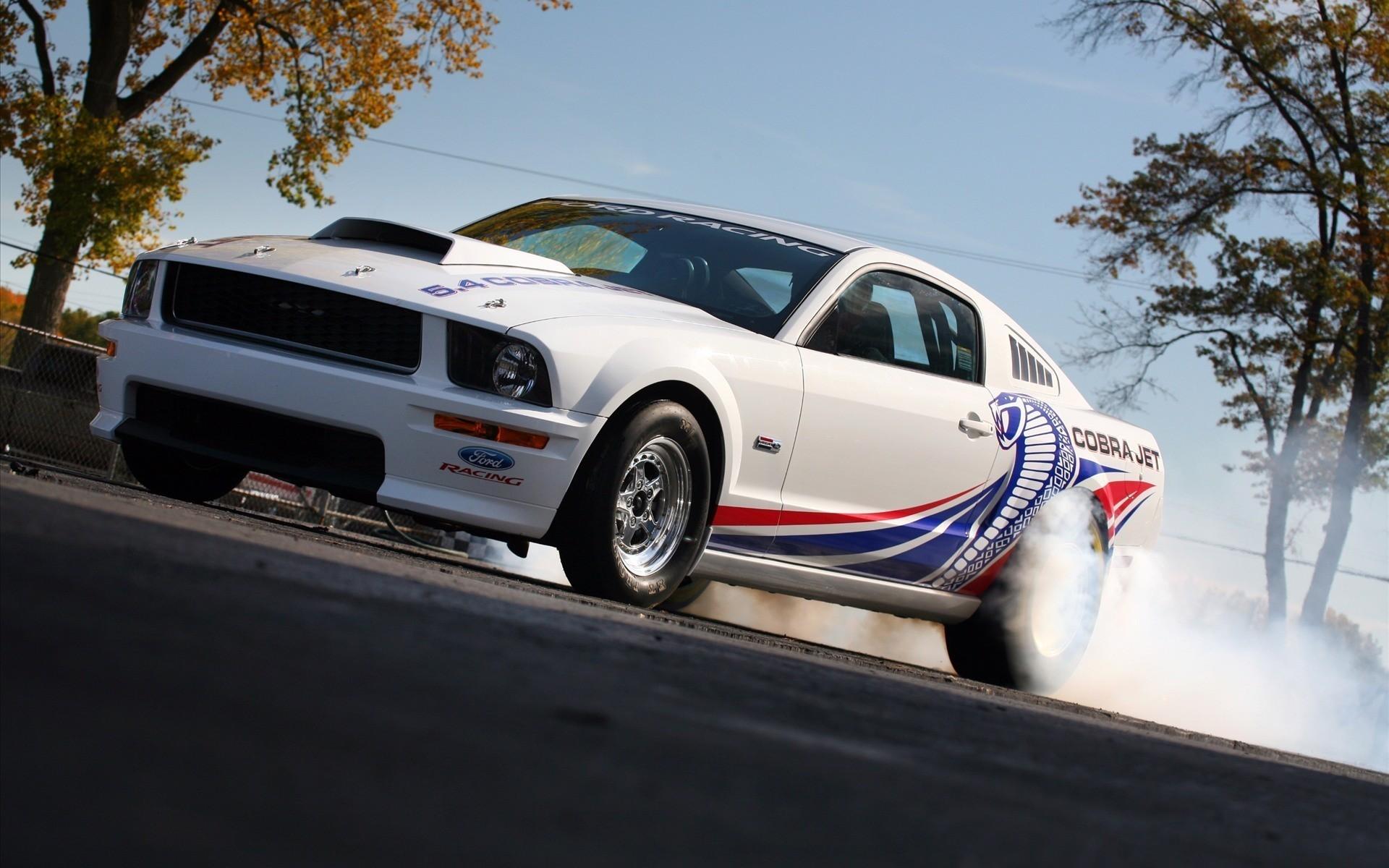 41913 скачать обои Транспорт, Машины, Мустанг (Mustang) - заставки и картинки бесплатно