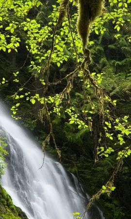 45670 скачать обои Пейзаж, Природа, Водопады - заставки и картинки бесплатно