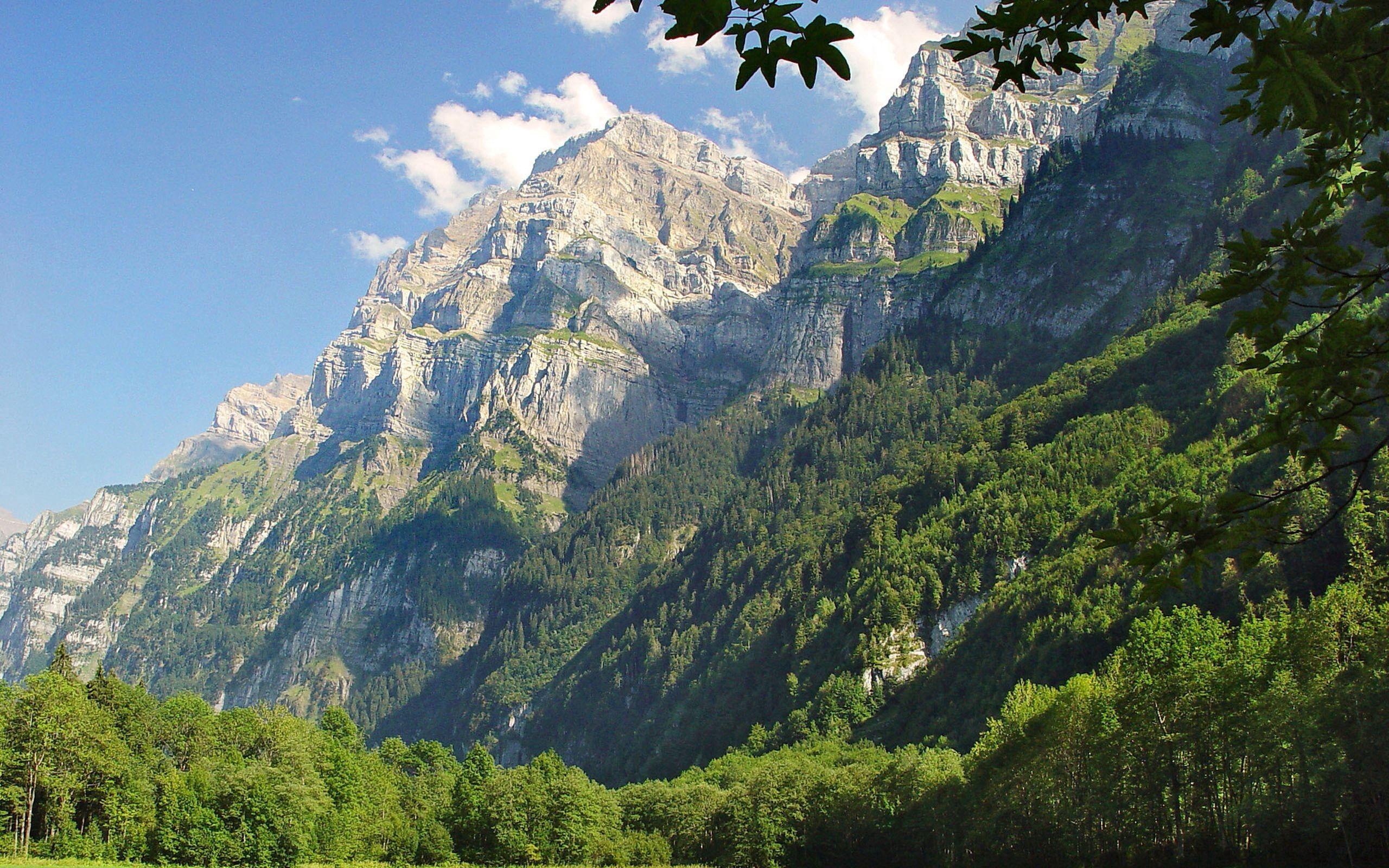 87501 скачать обои Природа, Деревья, Трава, Горы, Зелень - заставки и картинки бесплатно