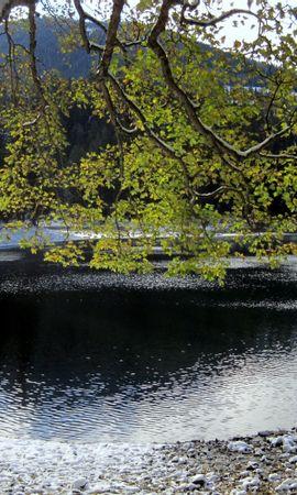 25316 скачать обои Пейзаж, Река, Деревья, Горы - заставки и картинки бесплатно