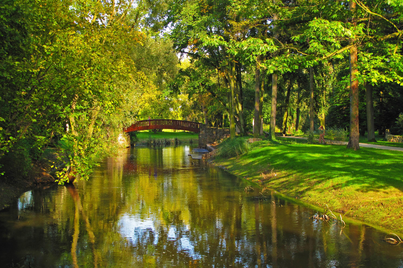 140542 Hintergrundbild 1024x600 kostenlos auf deinem Handy, lade Bilder Natur, Flüsse, Bäume, Polen, Der Park, Park 1024x600 auf dein Handy herunter