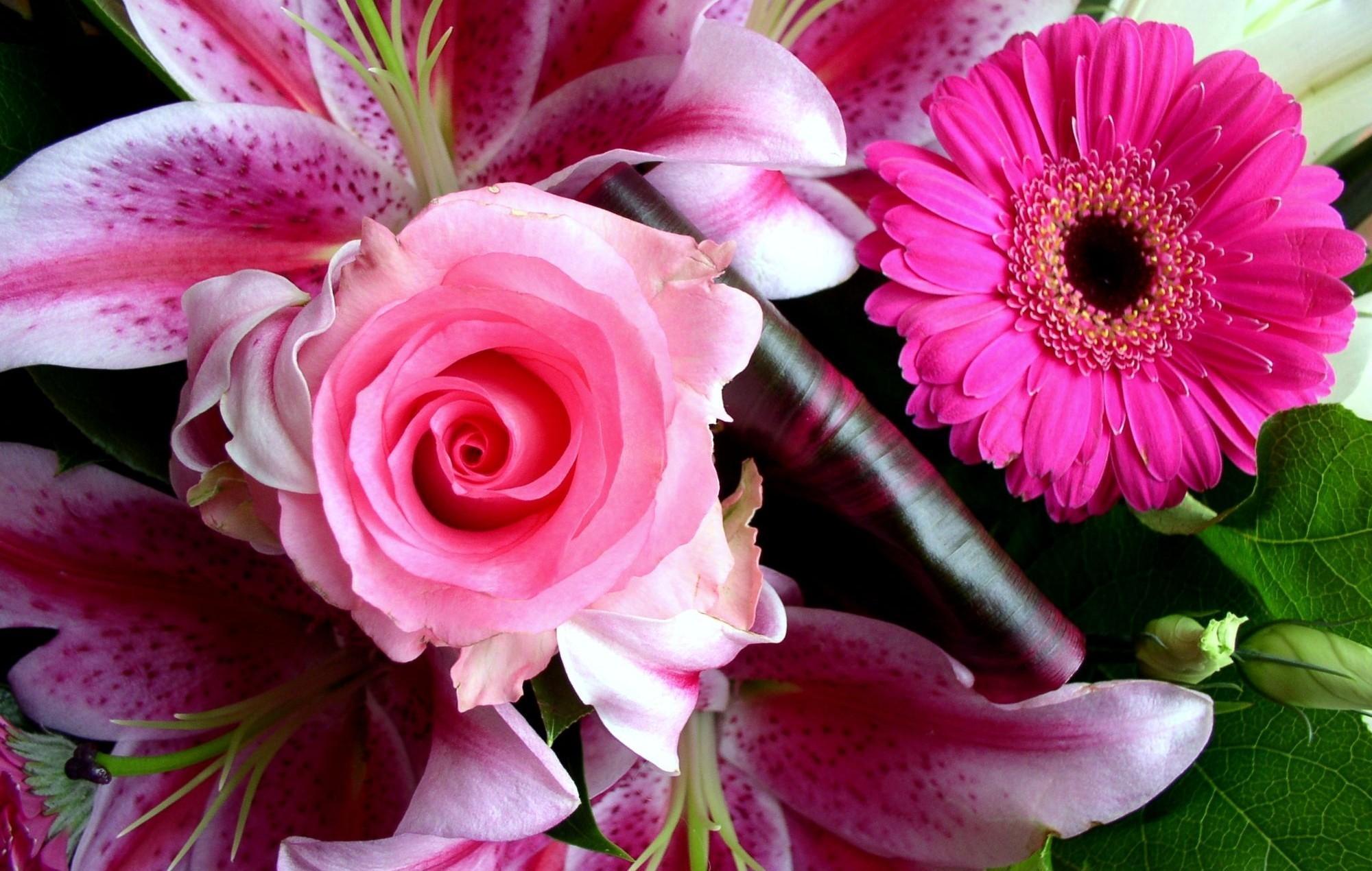 141976 télécharger le fond d'écran Fleurs, Une Rose, Rose, Gerbera, Lilies, Bouquet, Fermer, Gros Plan - économiseurs d'écran et images gratuitement