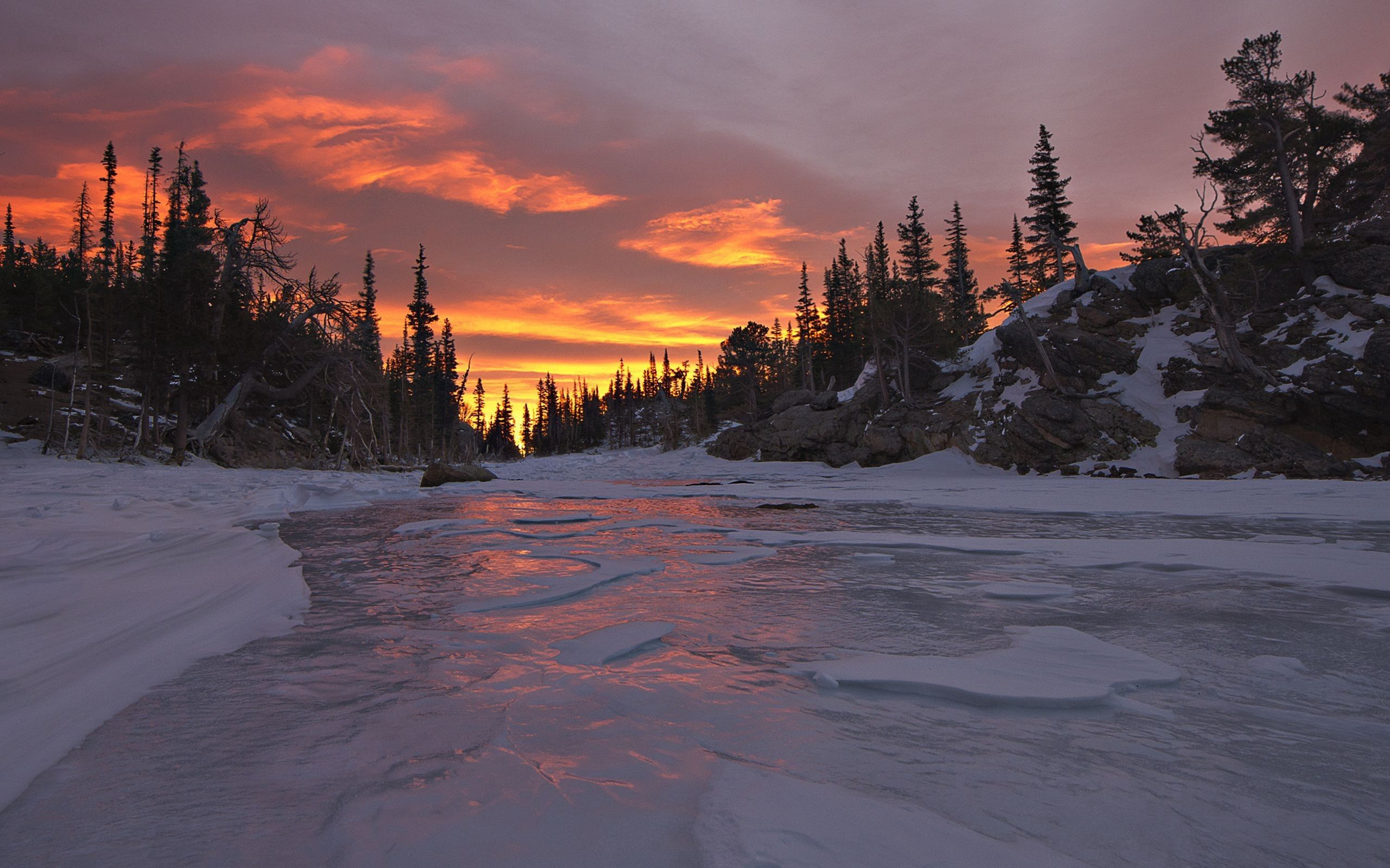 87900 download wallpaper Sunset, Nature, Trees, Sky, Snow screensavers and pictures for free