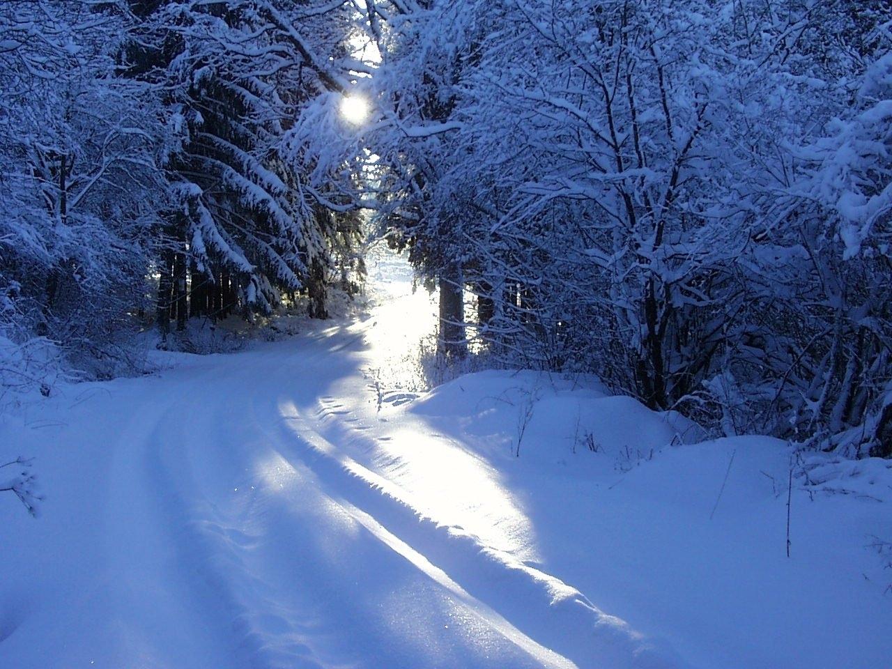 49543 Hintergrundbild 540x960 kostenlos auf deinem Handy, lade Bilder Landschaft, Winterreifen, Natur, Schnee 540x960 auf dein Handy herunter