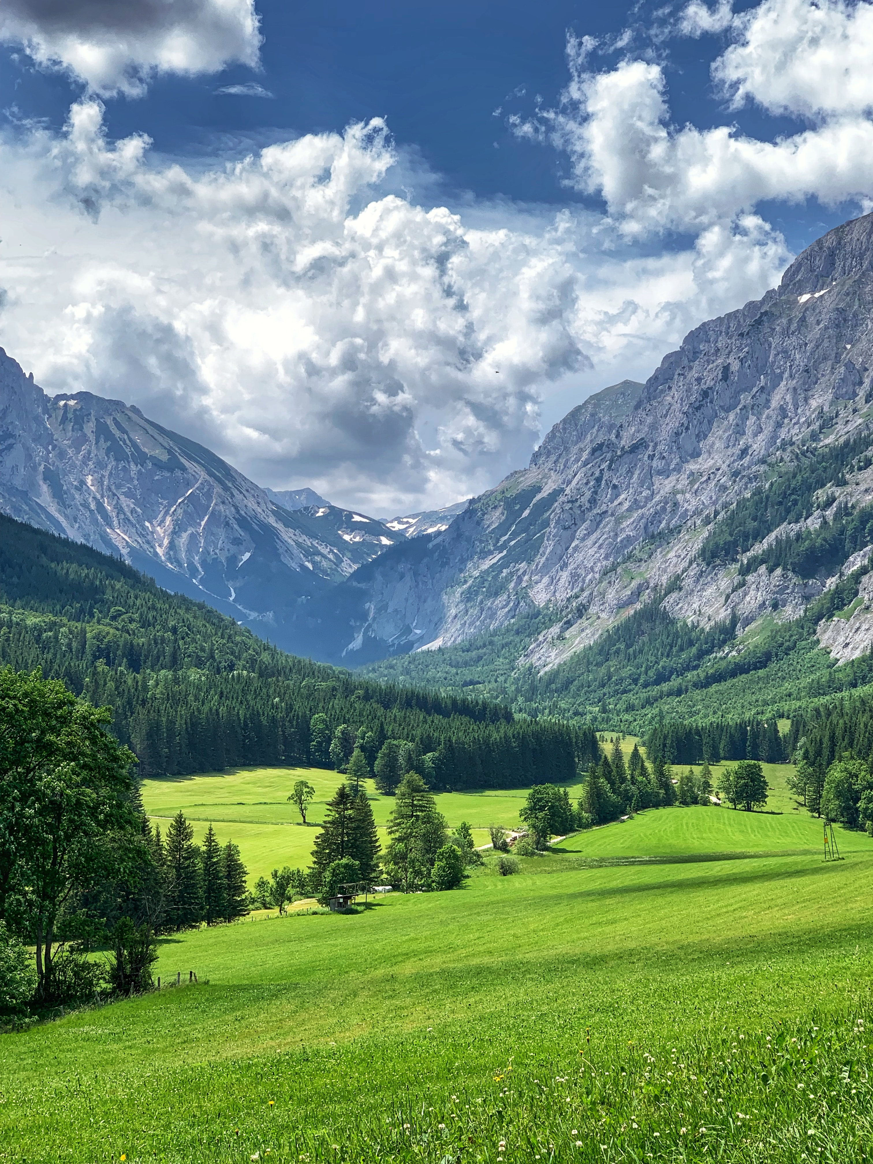 136836 скачать обои Пейзаж, Трава, Зеленый, Природа, Деревья, Горы, Долина - заставки и картинки бесплатно