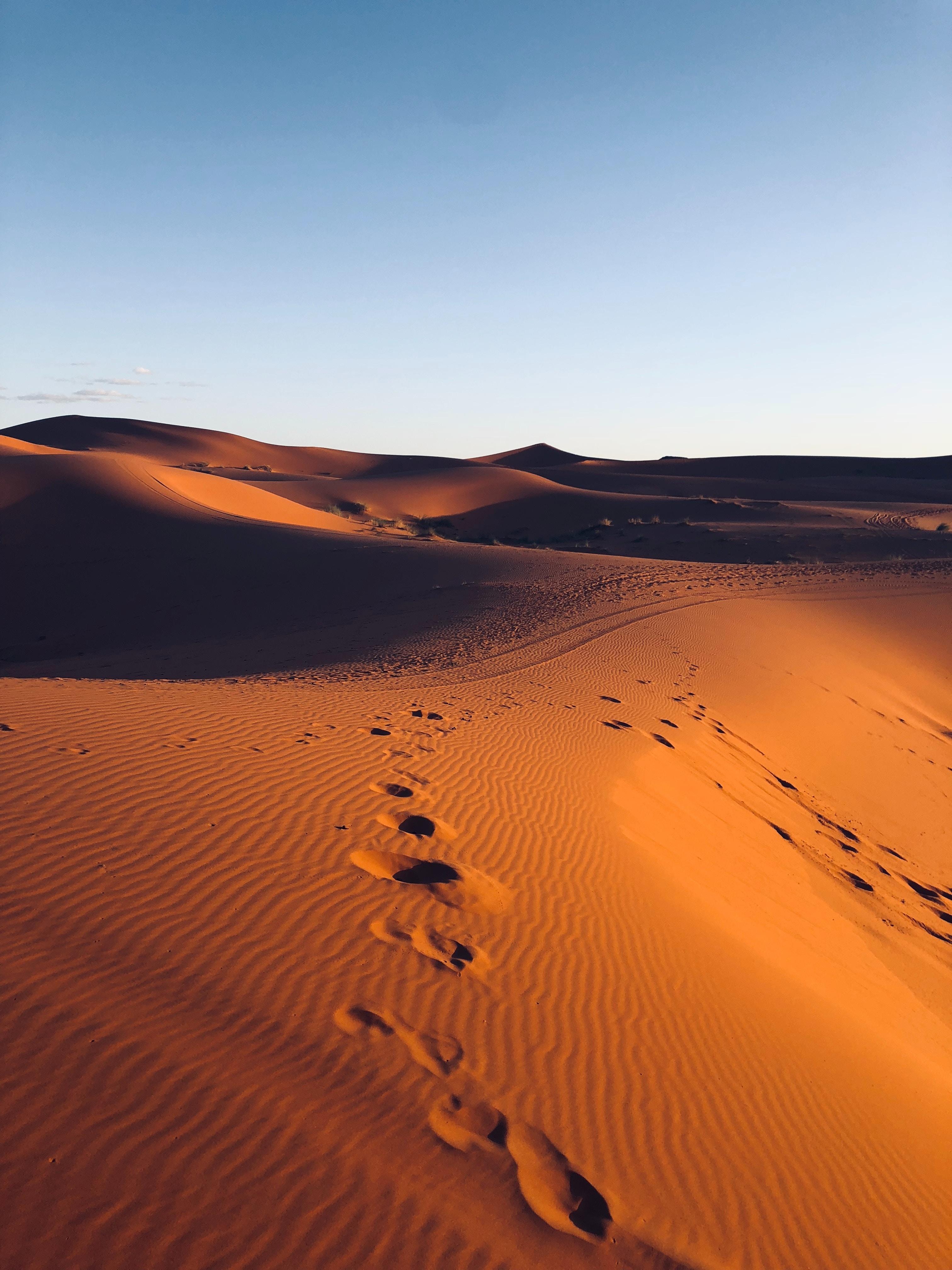 110714 обои 480x800 на телефон бесплатно, скачать картинки Природа, Песок, Пустыня, Марокко, Следы 480x800 на мобильный