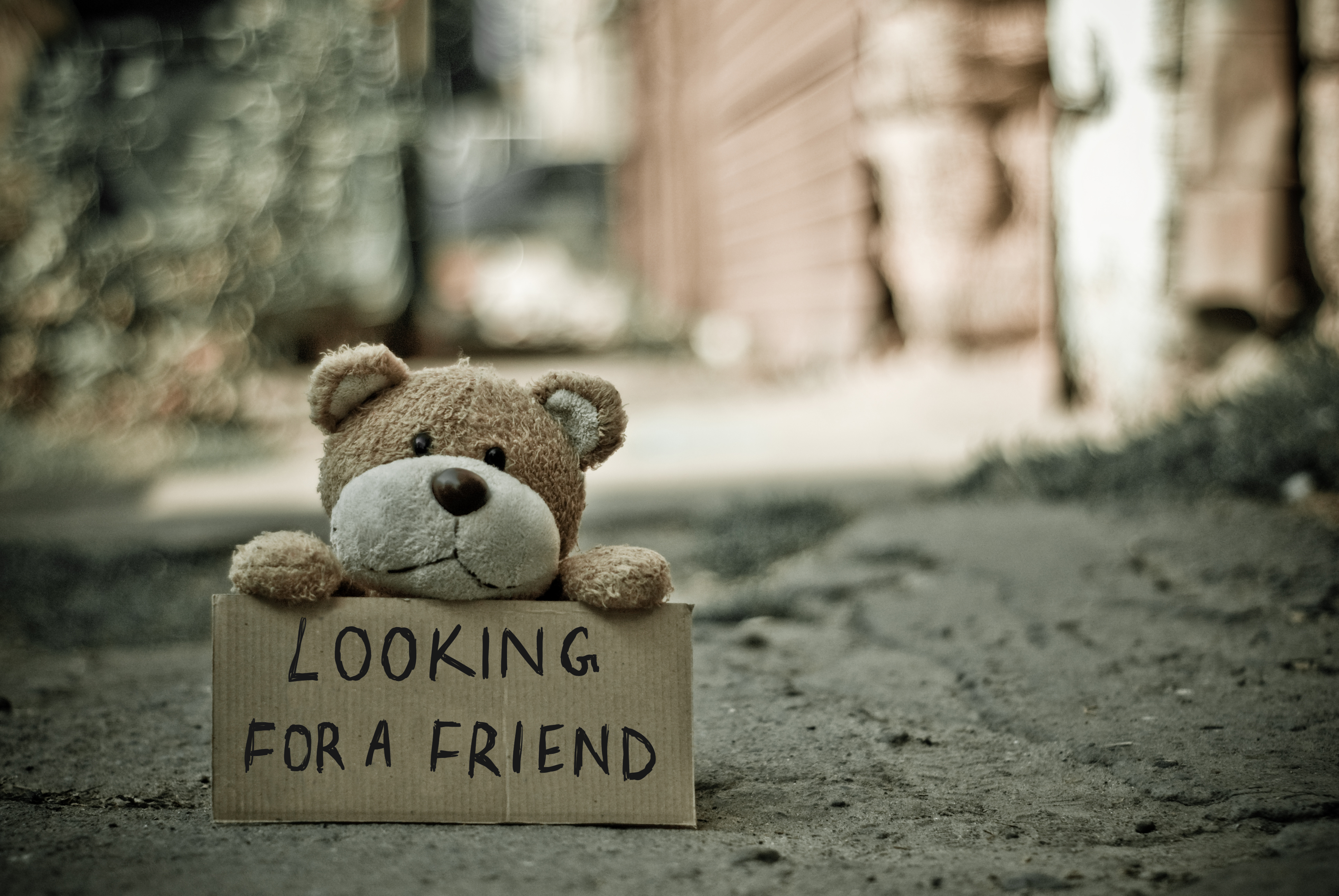 58434 download wallpaper Words, Teddy Bear, Toy, Inscription screensavers and pictures for free