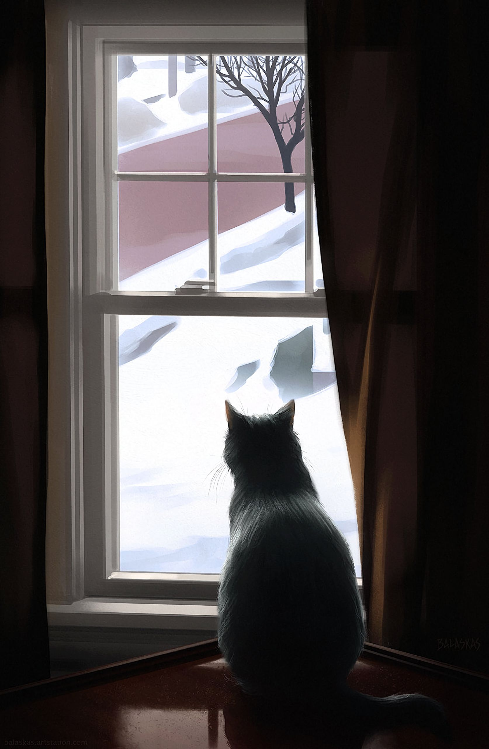 86610 download wallpaper Animals, Winter, Cat, Window, Coziness, Comfort screensavers and pictures for free