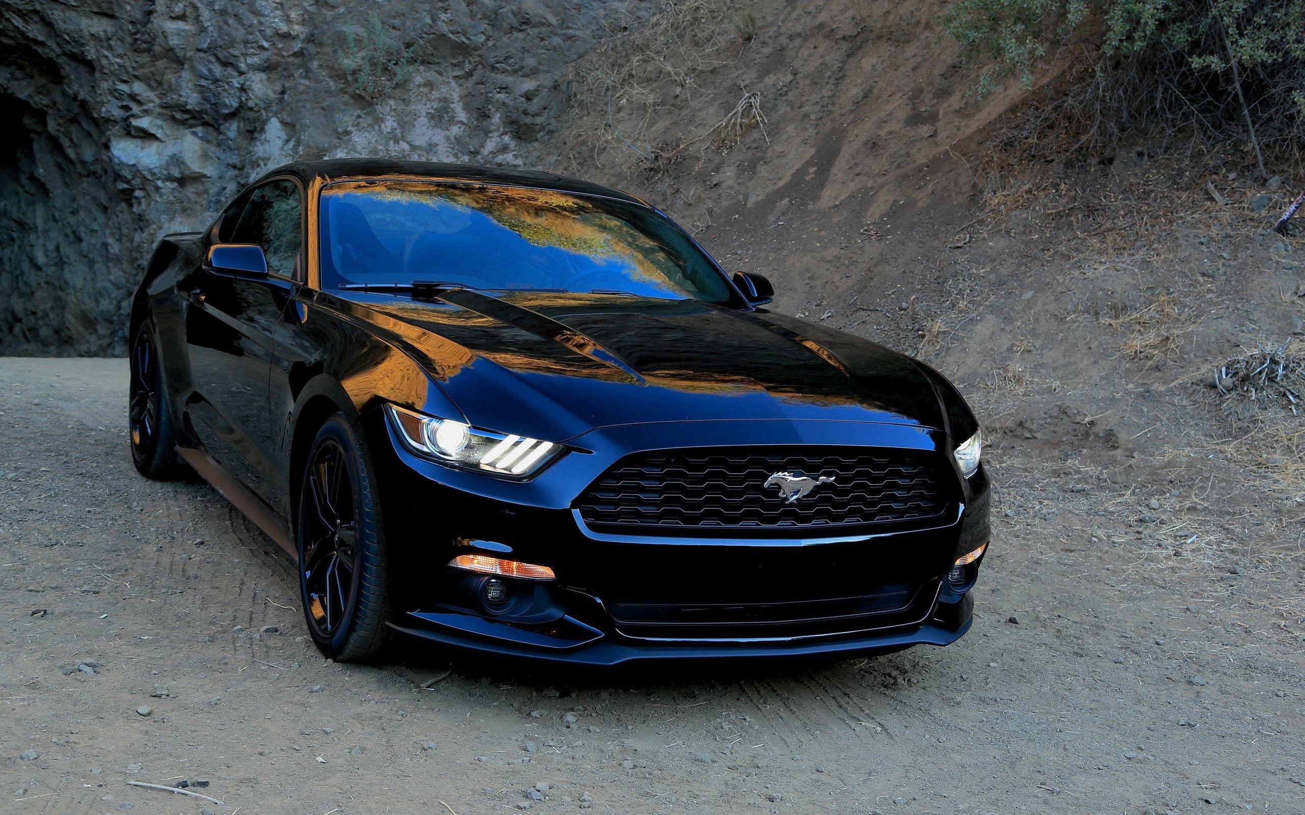 143564 Заставки и Обои Вид Спереди на телефон. Скачать Мустанг (Mustang), Вид Спереди, Форд (Ford), Тачки (Cars), Черный, Спорткар картинки бесплатно