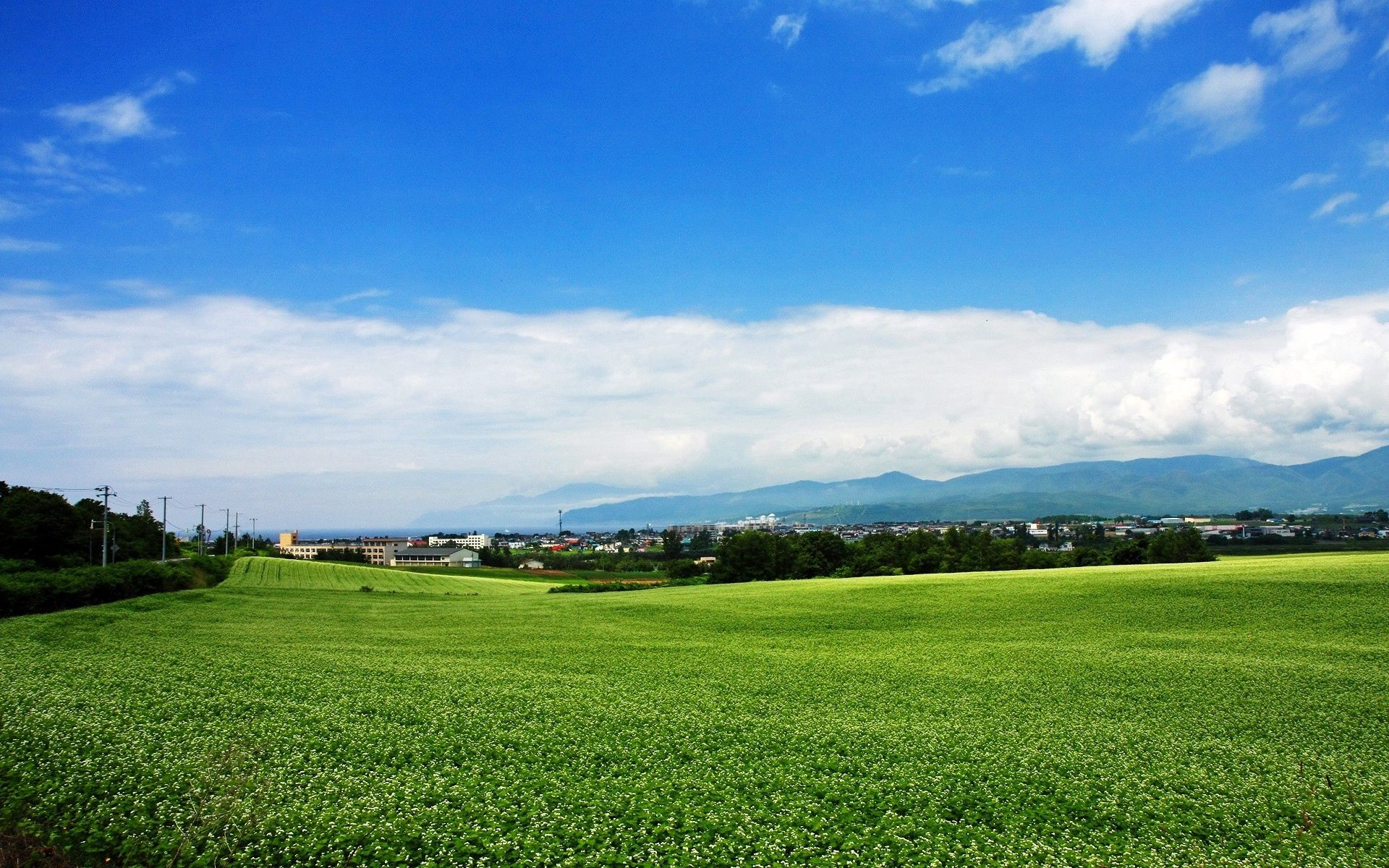 50664 download wallpaper Nature, Summer, Field, Village, Japan, Plantation screensavers and pictures for free