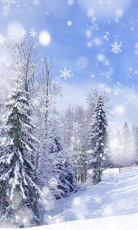25579 скачать обои Пейзаж, Зима, Деревья, Снег, Елки - заставки и картинки бесплатно