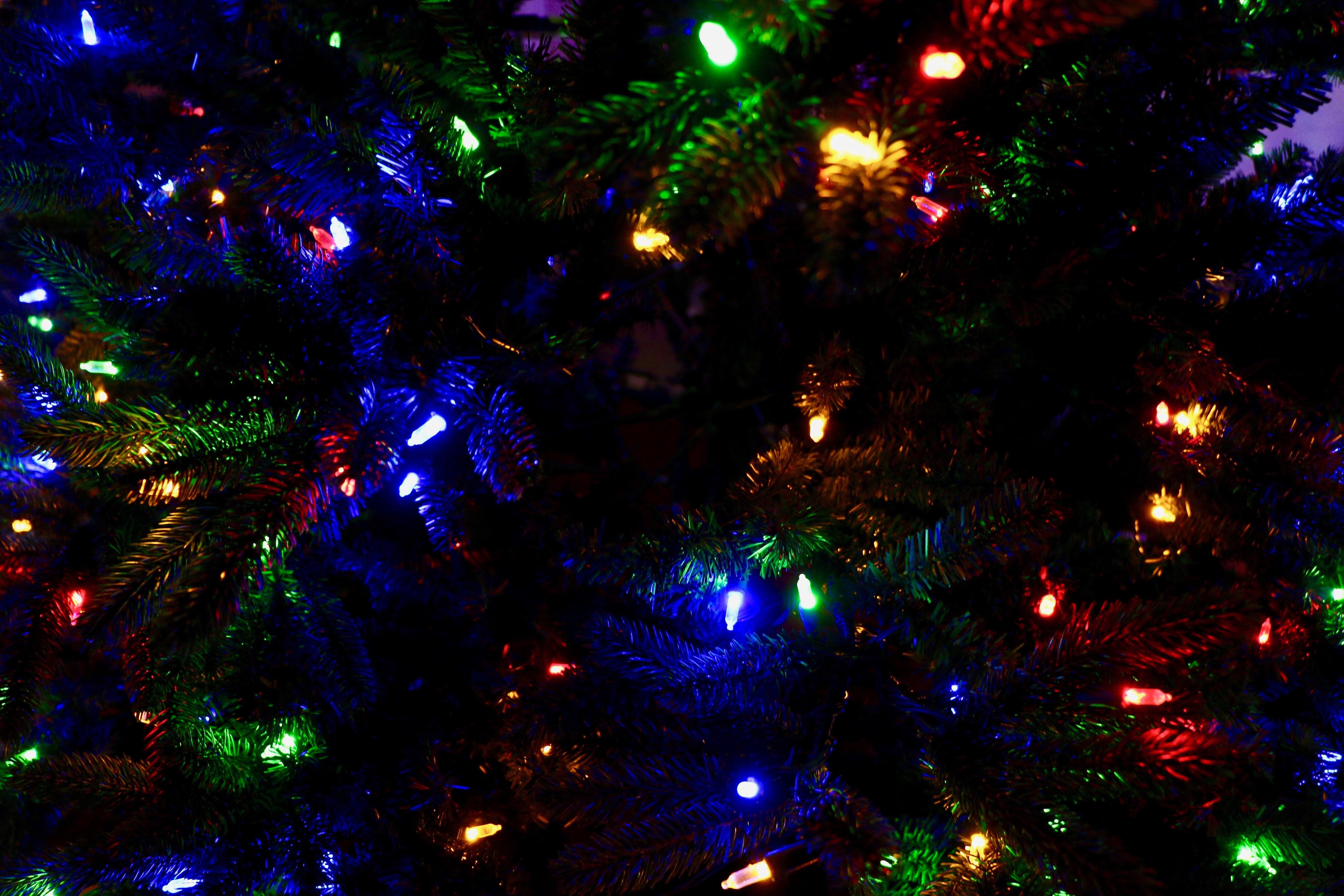 82497 Salvapantallas y fondos de pantalla Año Nuevo en tu teléfono. Descarga imágenes de Vacaciones, Guirnaldas, Guirnalda, Árbol De Navidad, Navidad, Año Nuevo, Decoración, Multicolor, Abigarrado gratis