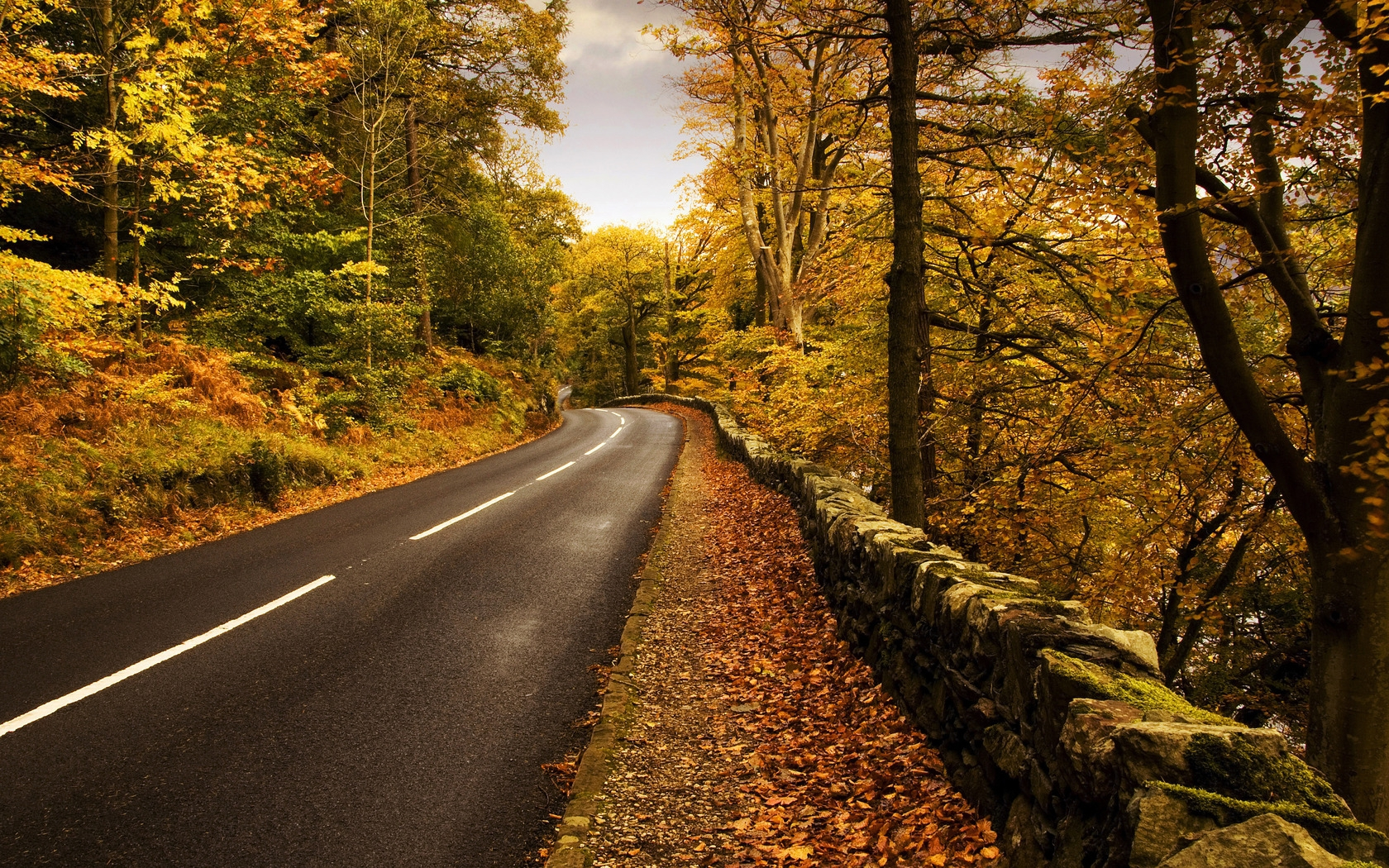 34867 download wallpaper Landscape, Roads, Autumn screensavers and pictures for free