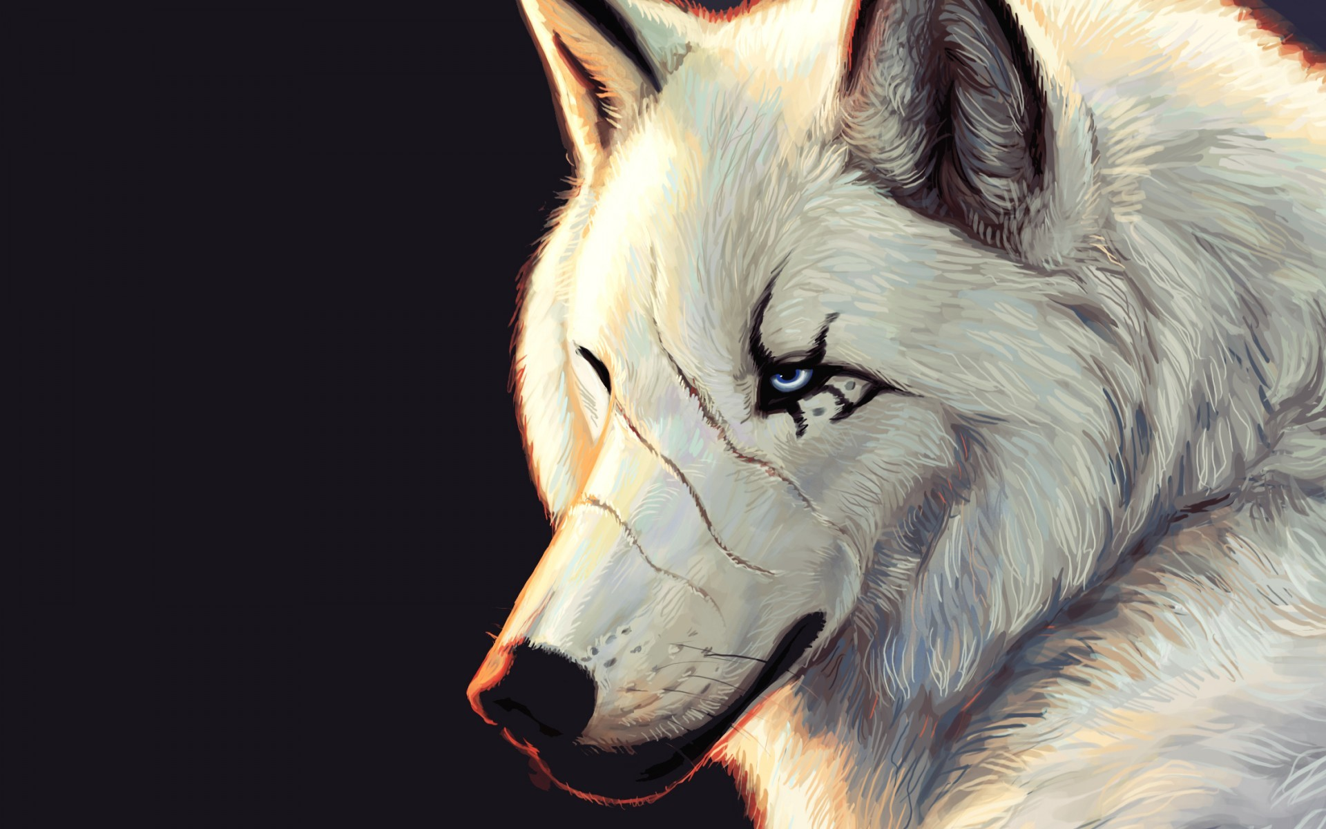 49250 download wallpaper Animals, Wolfs, Pictures screensavers and pictures for free