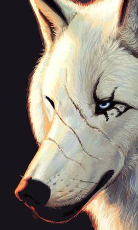49250 завантажити шпалери Тварини, Вовки, Малюнки - заставки і картинки безкоштовно