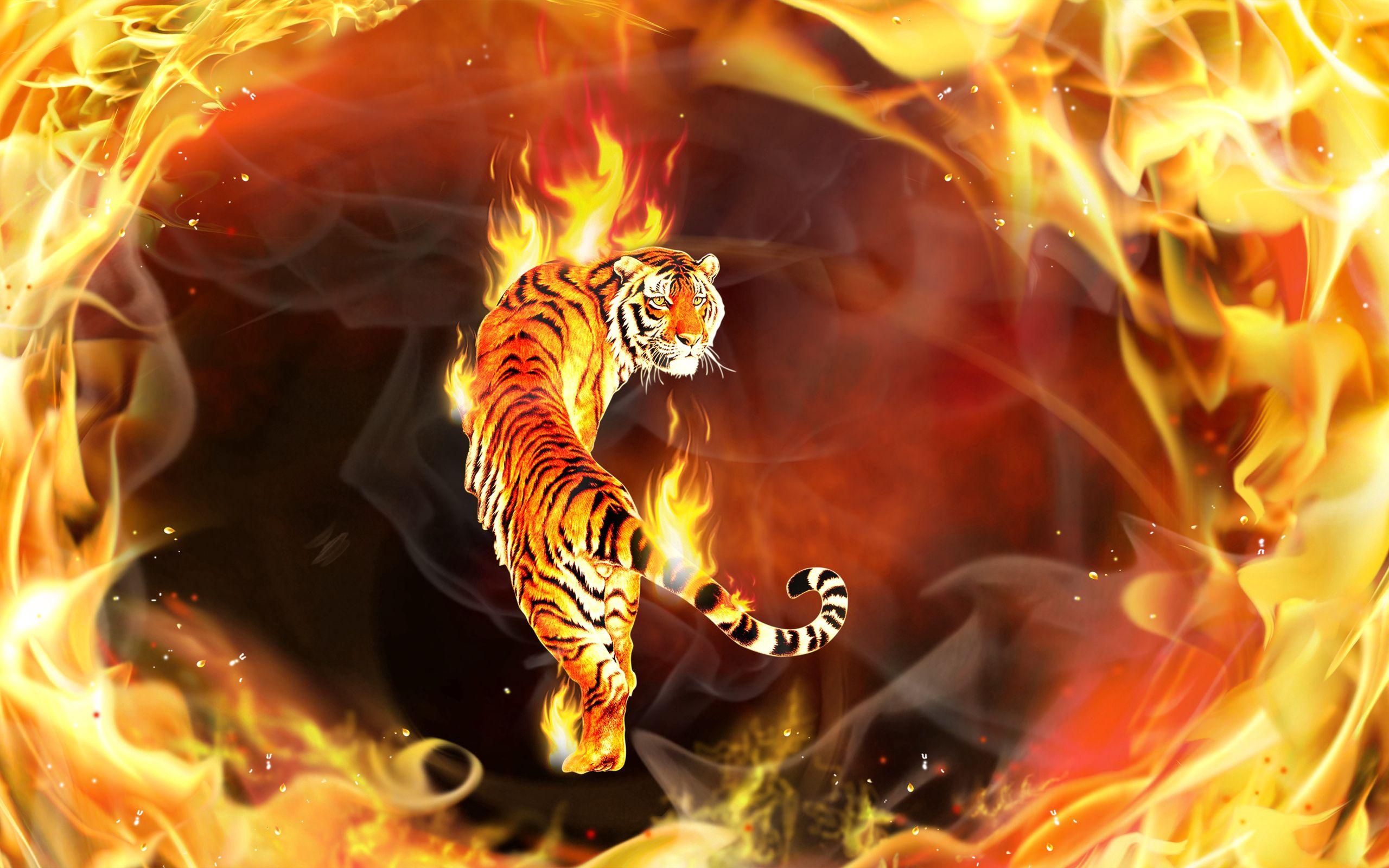 58443 скачать обои Абстракция, Пламя, Тигр, Вокруг, Объятый - заставки и картинки бесплатно