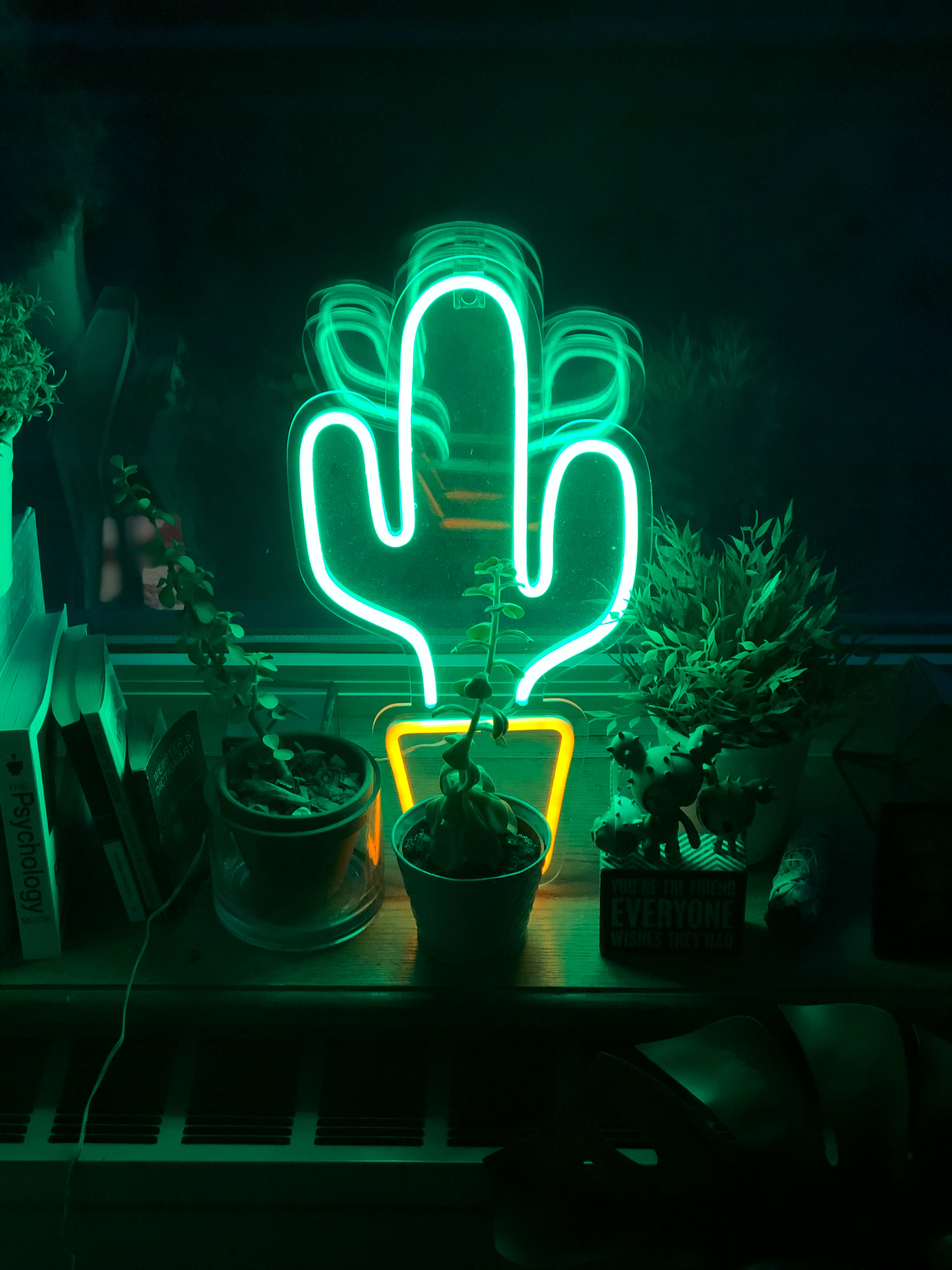 145928 free wallpaper 480x800 for phone, download images Flowers, Shine, Light, Miscellanea, Miscellaneous, Neon, Cactus 480x800 for mobile