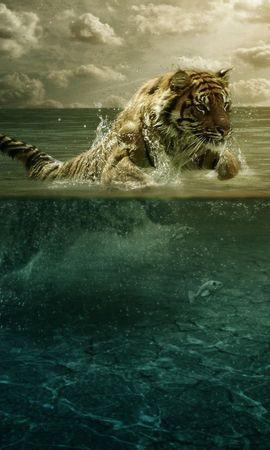 117972 скачать обои Животные, Тигр, Прыжок, Море, Под Водой, Охота - заставки и картинки бесплатно