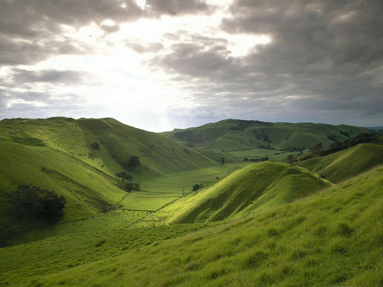 24229 скачать обои Пейзаж, Трава, Горы, Облака - заставки и картинки бесплатно