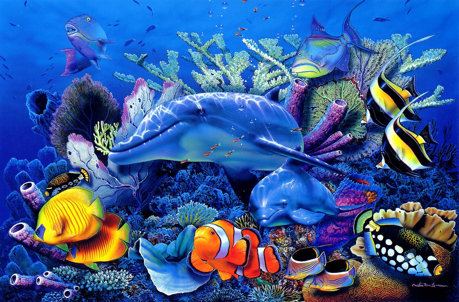 21874 download wallpaper Animals, Dolfins, Sea, Fishes screensavers and pictures for free