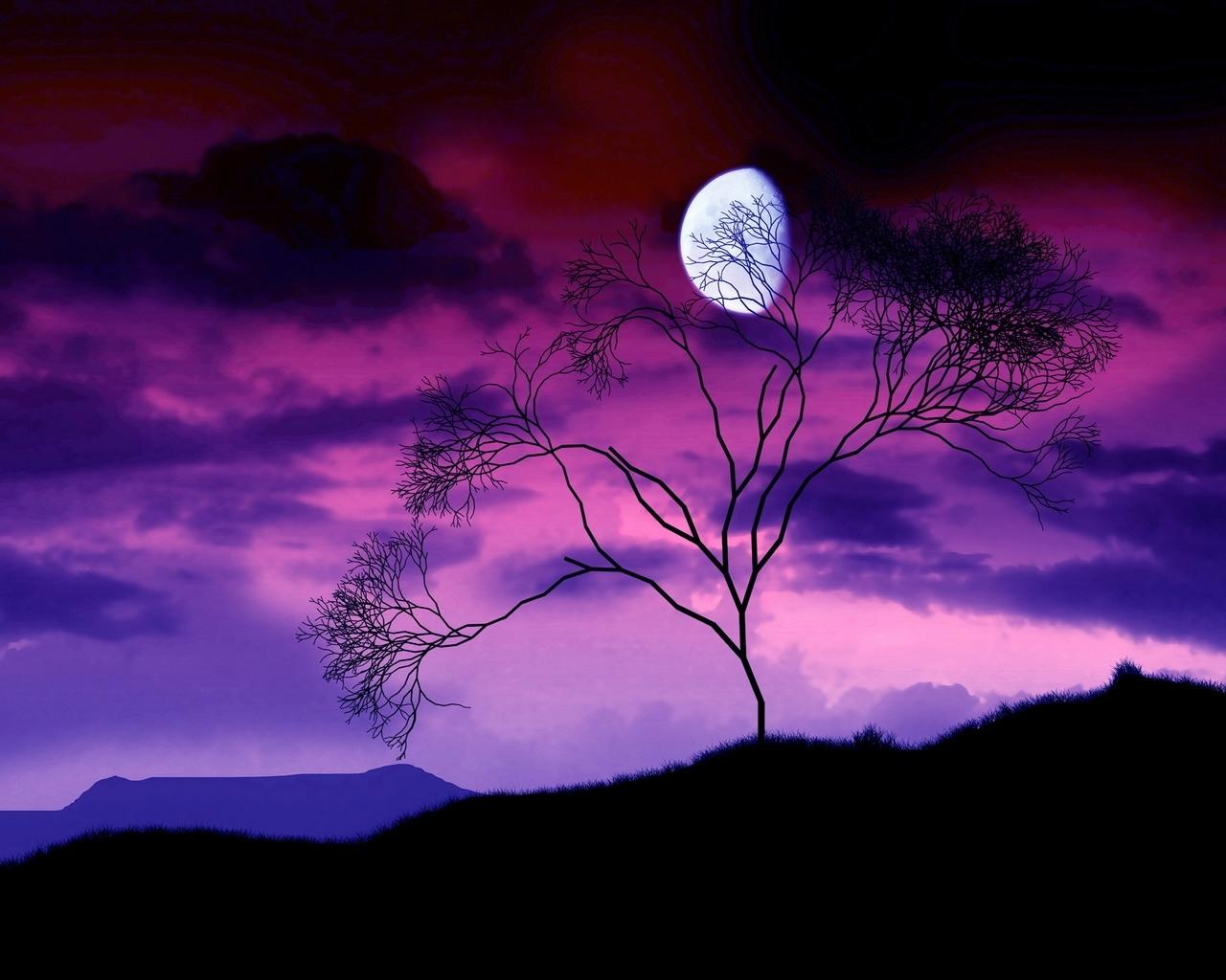 3922 скачать обои Пейзаж, Деревья, Небо, Луна - заставки и картинки бесплатно
