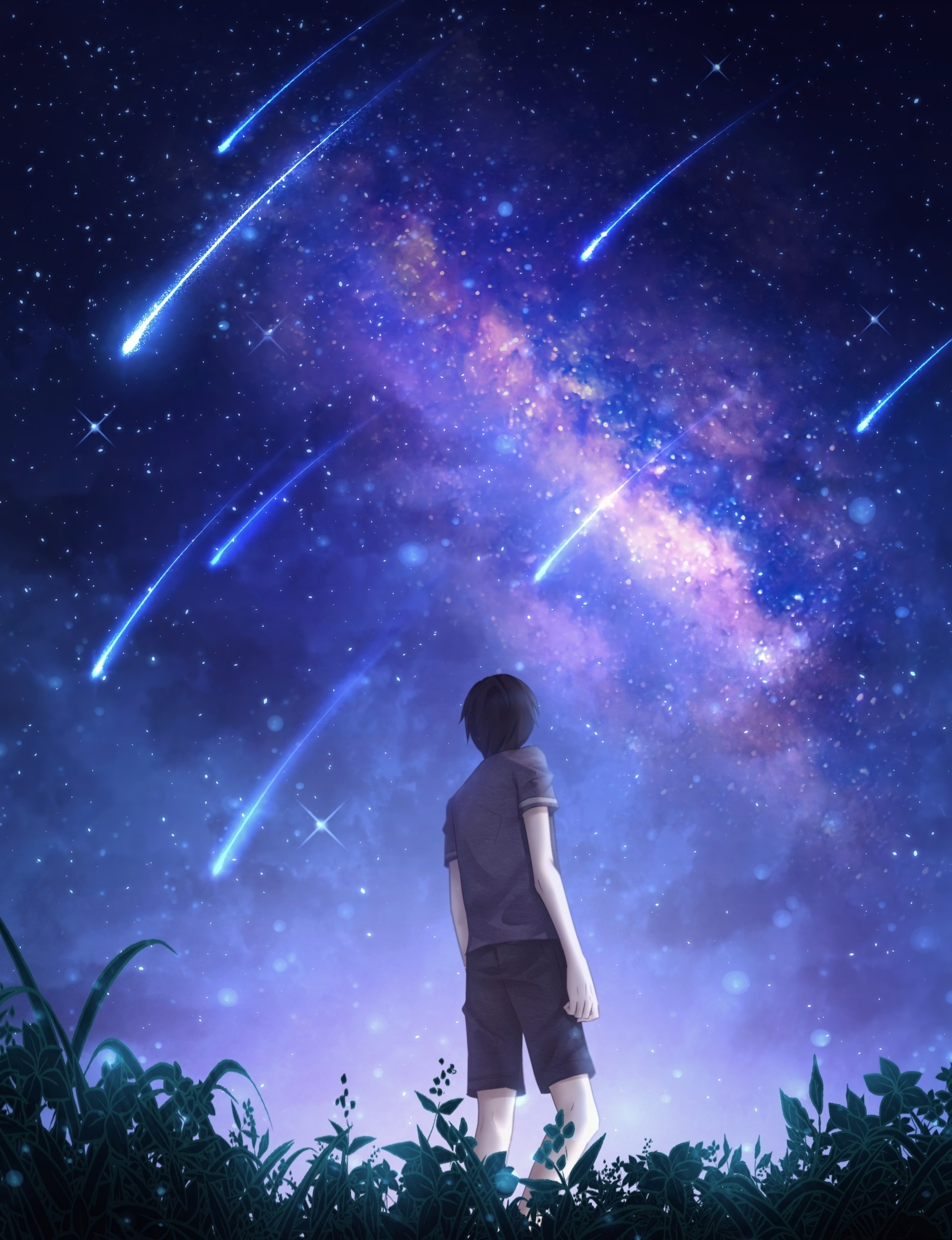 138327 download wallpaper Silhouette, Starry Sky, Meteora, Meteors, Starfall, Night, Art screensavers and pictures for free